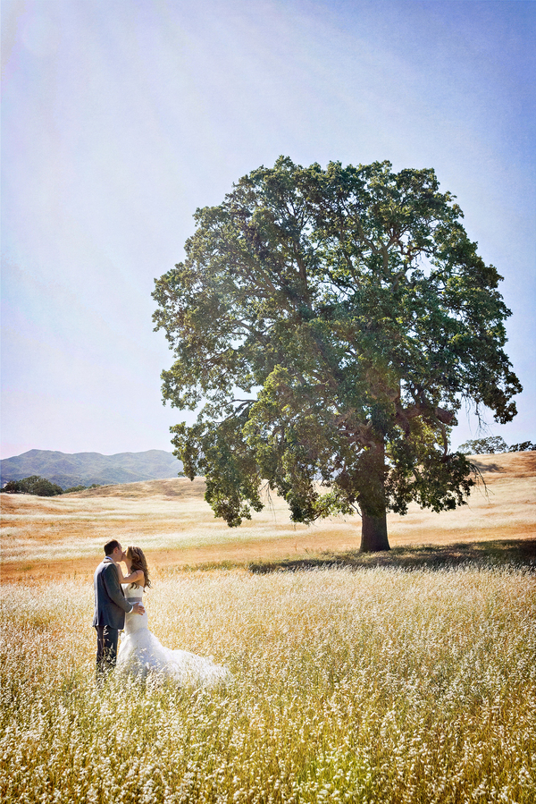 Bride and Groom Portrait with Large Oak Tree | Photo by William Innes Photography | via www.brendasweddingblog.com