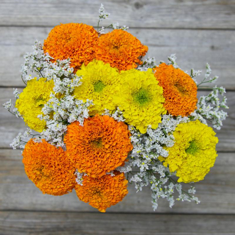 Unique Fall Bouquet :  Jack O' Lanterns  - farm fresh French Marigolds
