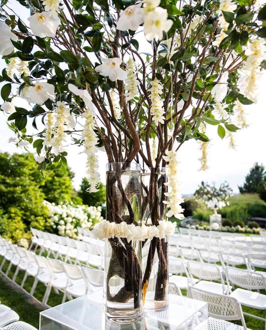 instagram-spotlight-branches-in-vase-060216.jpg
