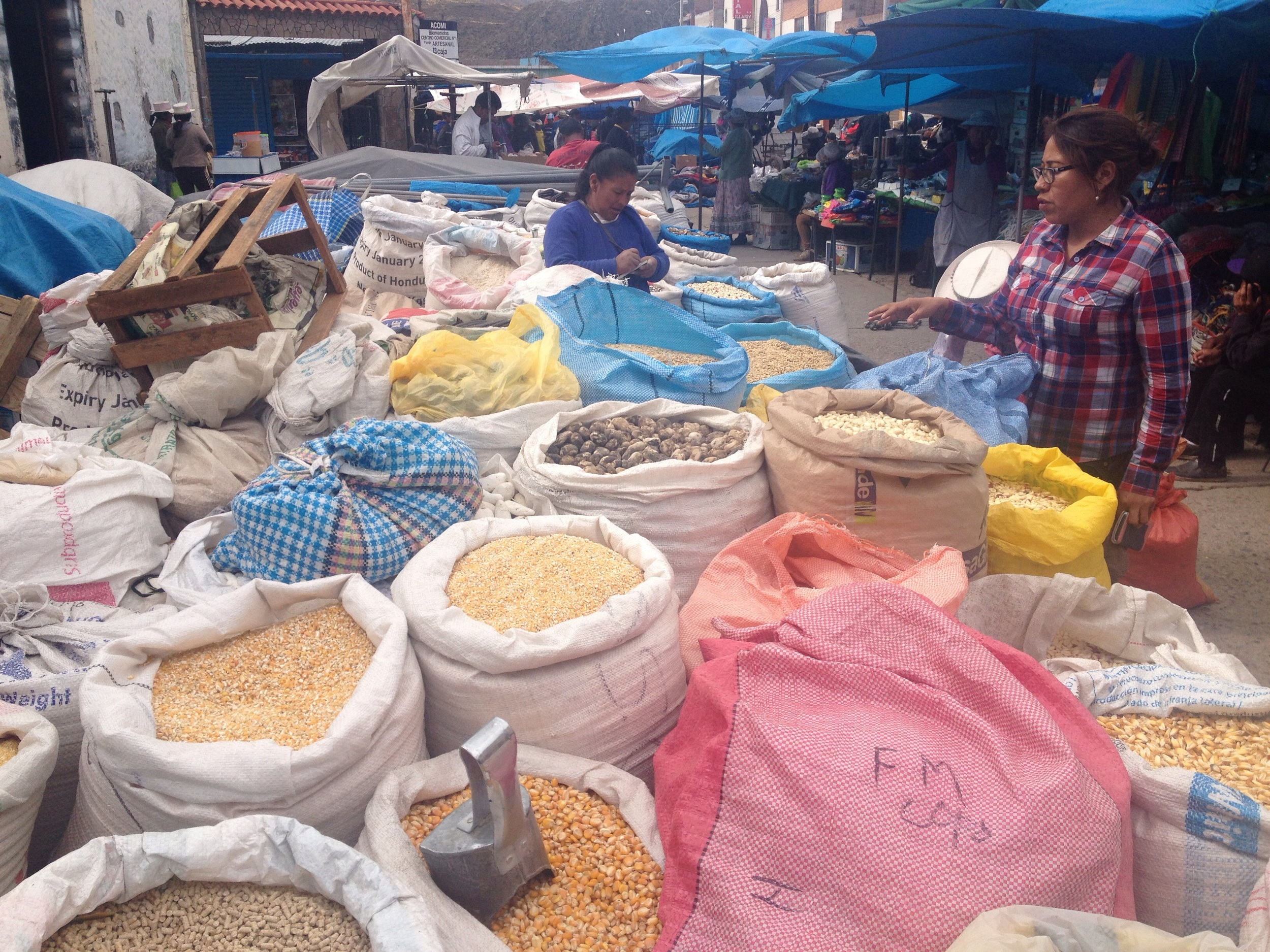 There are suppose to be over 52 varieties of corn in Colca Canyon