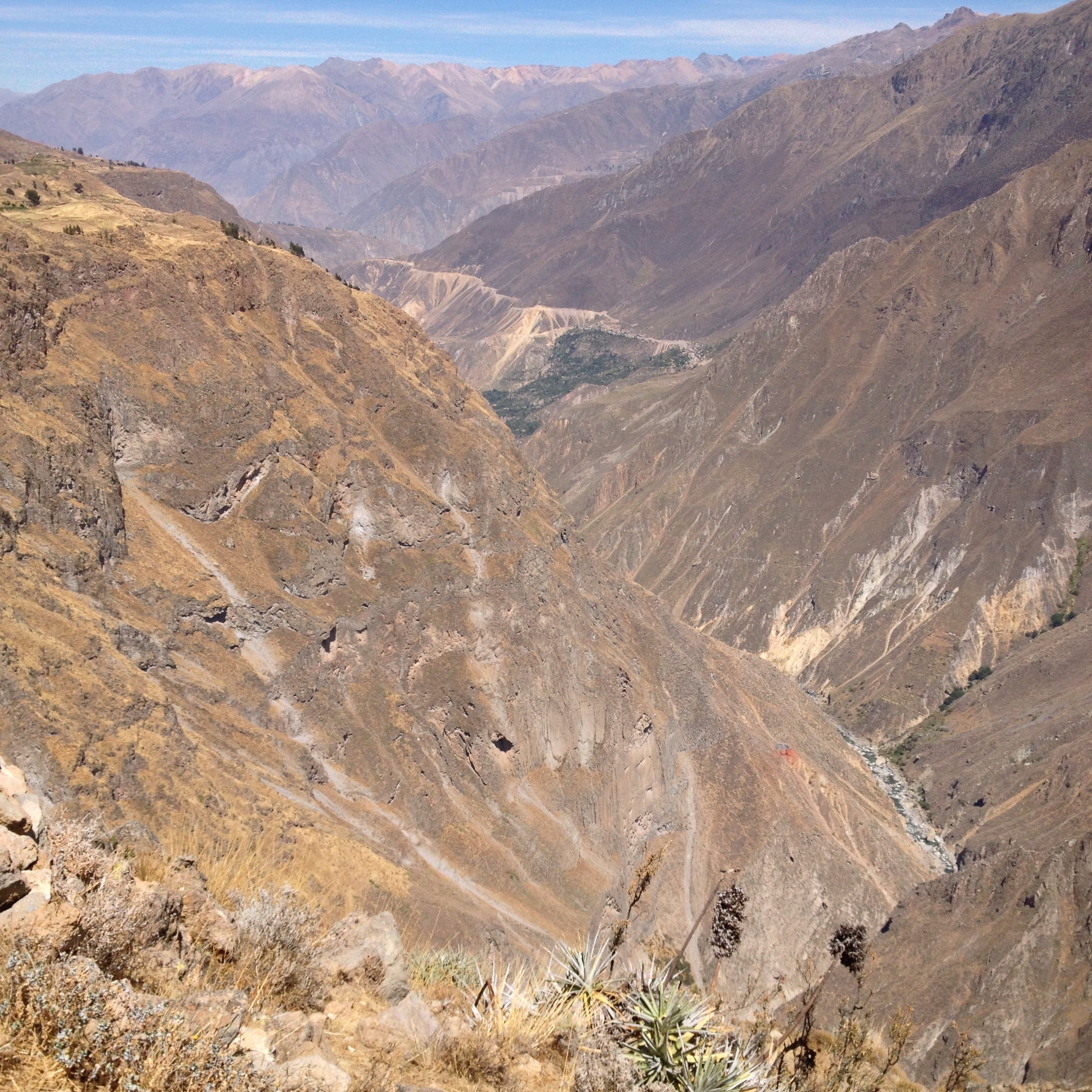 Looking up the Colca Canyon- spot the river at the bottom