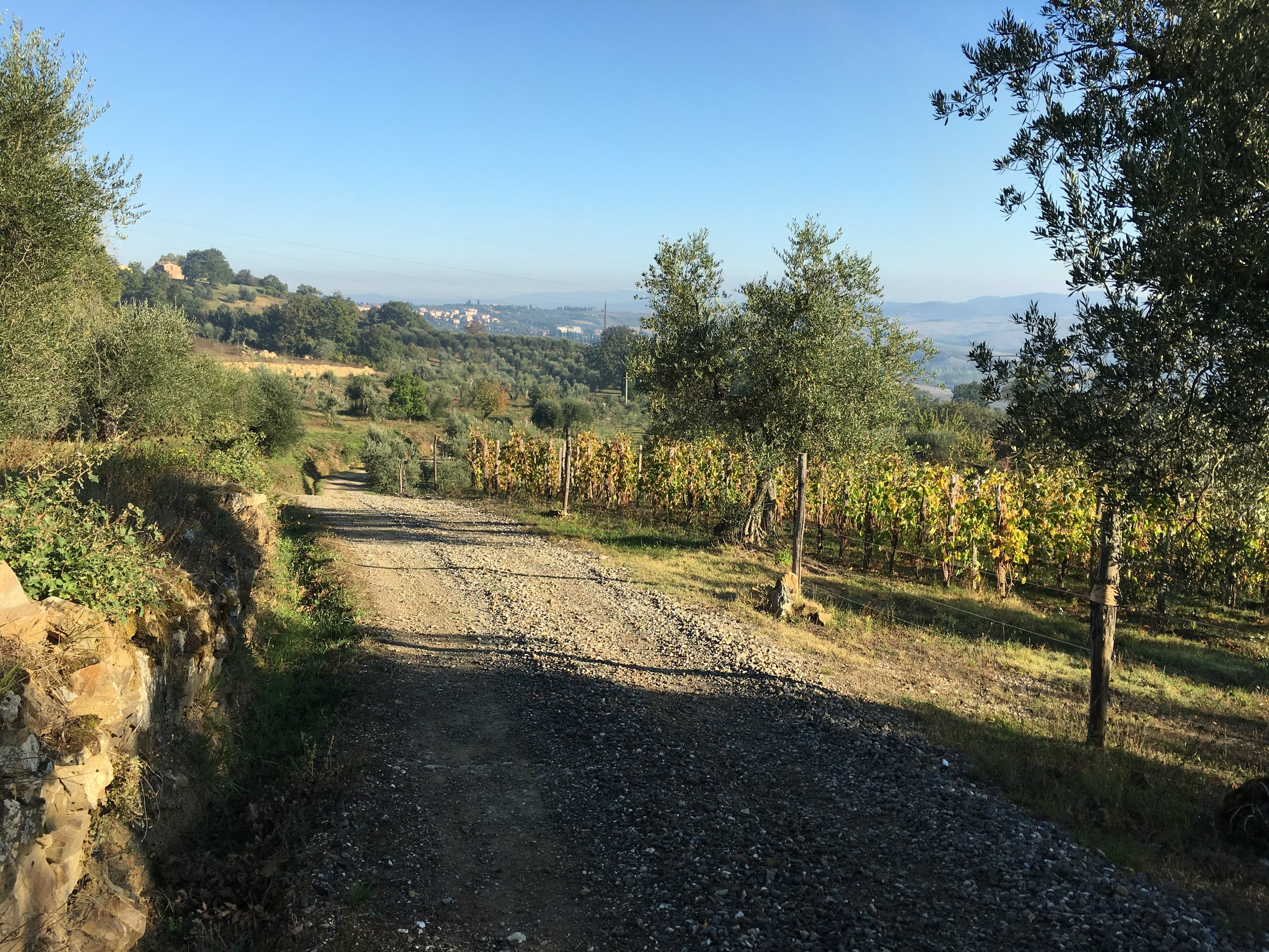 A short stroll in the Tuscan hills