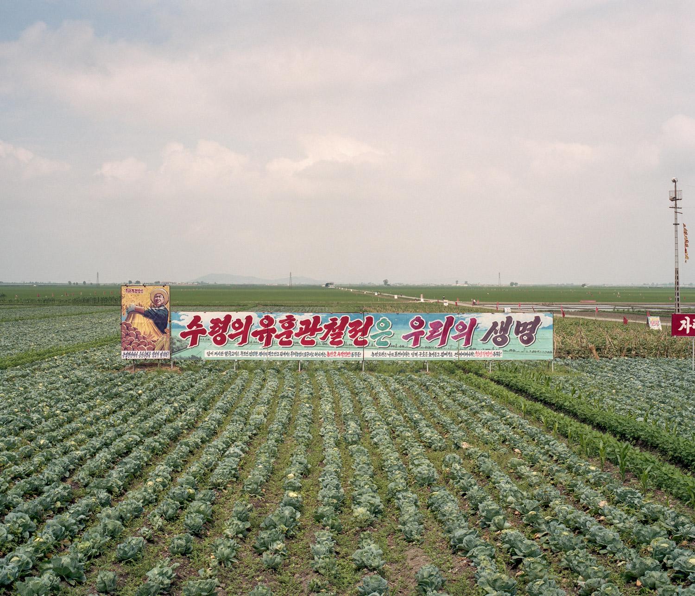NK-largeedit-169.jpg