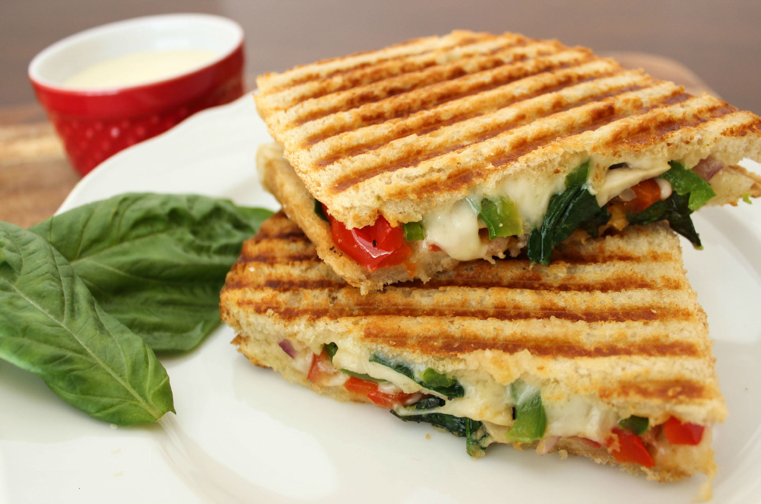 VEGETARIAN PANINI                                               25    Grilled ciabatta bread sandwiched with mixed grilled vegetable topped with melted mozzarella cheese