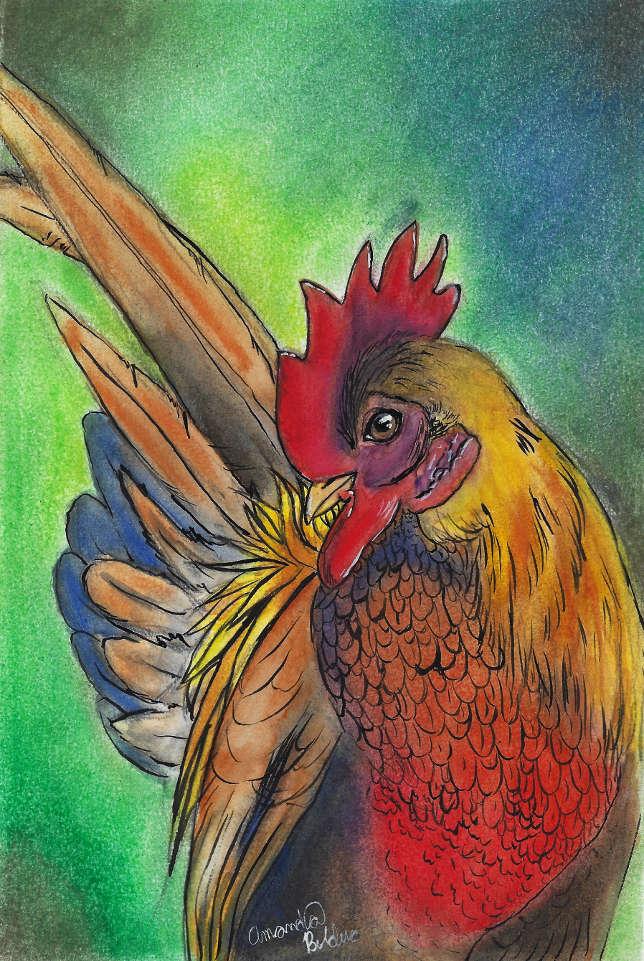 Orange Rooster.jpg