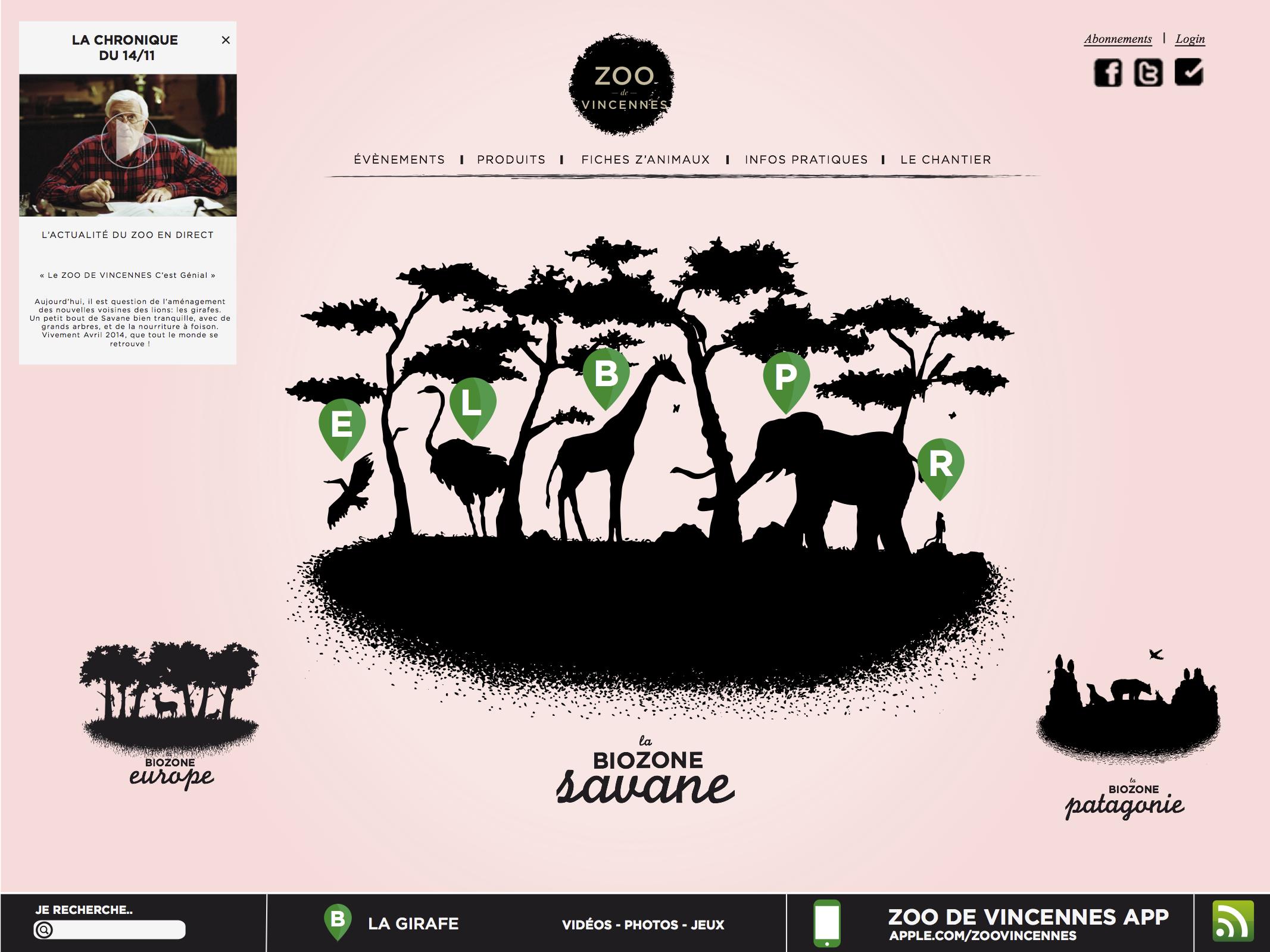 Le site du Zoo de VIncennes - www.marionchibrard.com