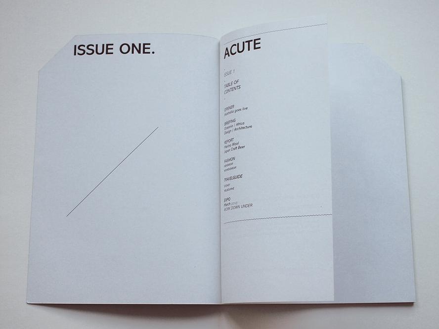 Acute - Magazine réalisé avec Audrey Manlot - ECV - 34.26.png