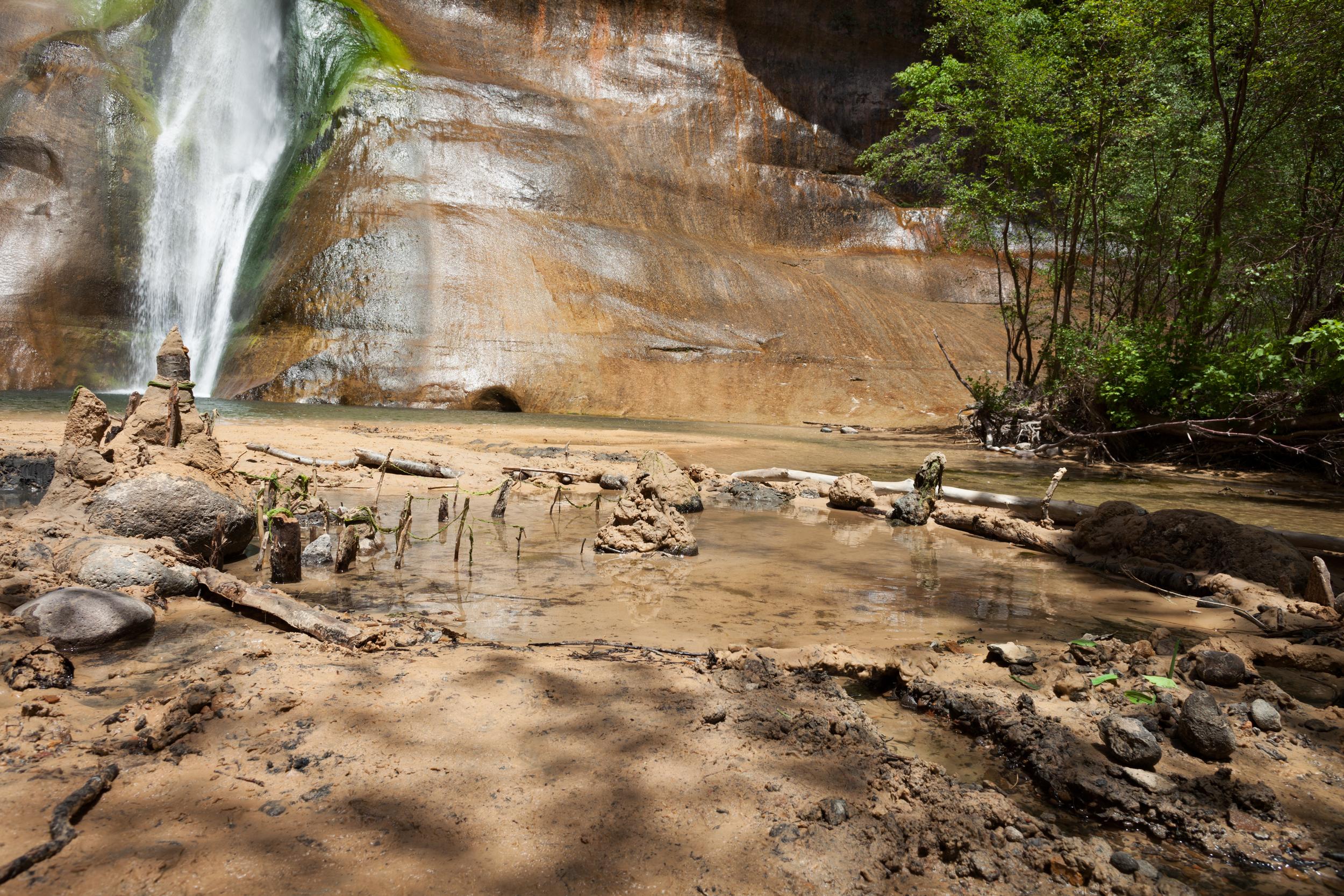 Lower Calf Creek Falls Restoration Project