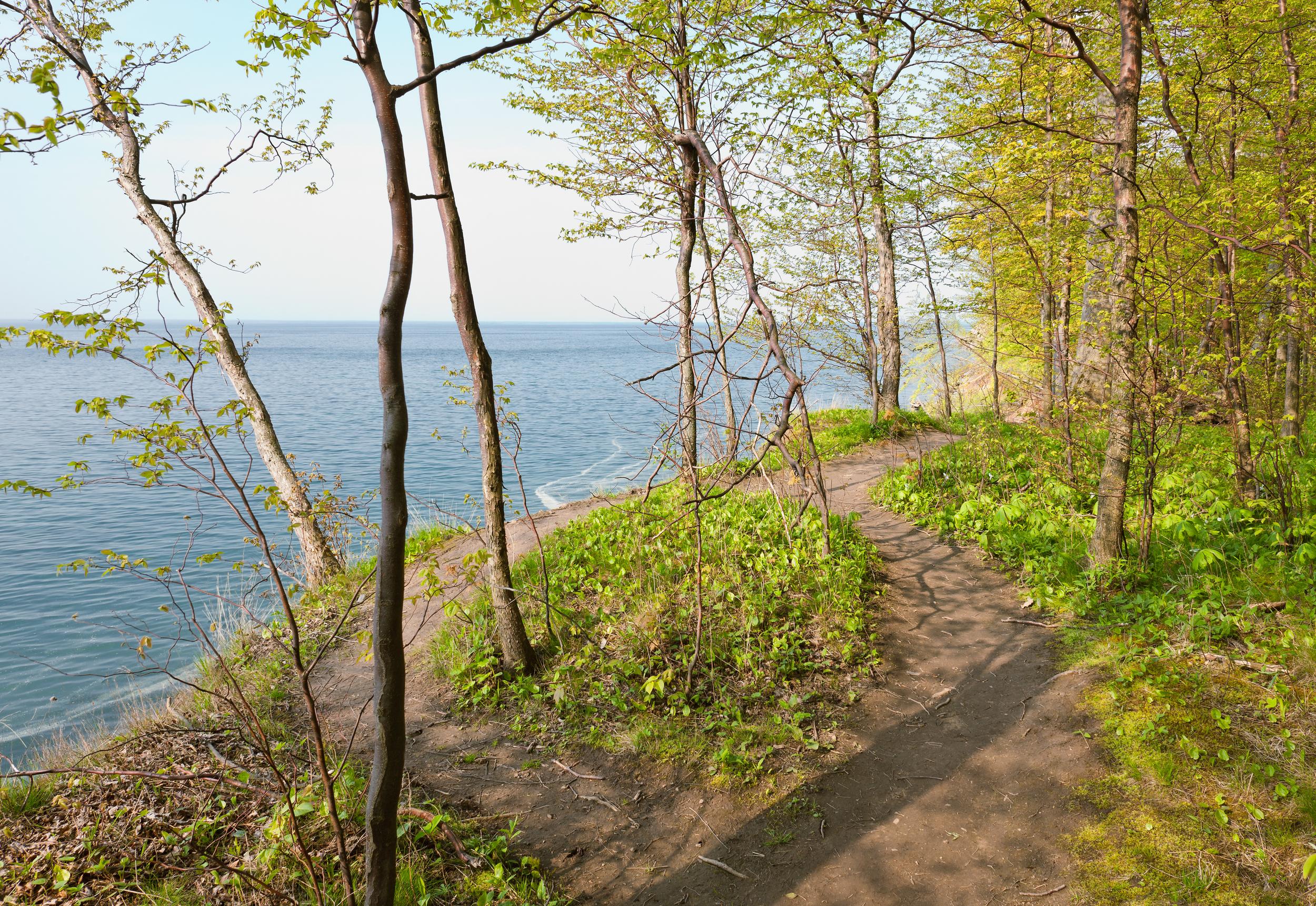 Hikers' Path, Lake Ontario Shoreline at Chimney Bluffs