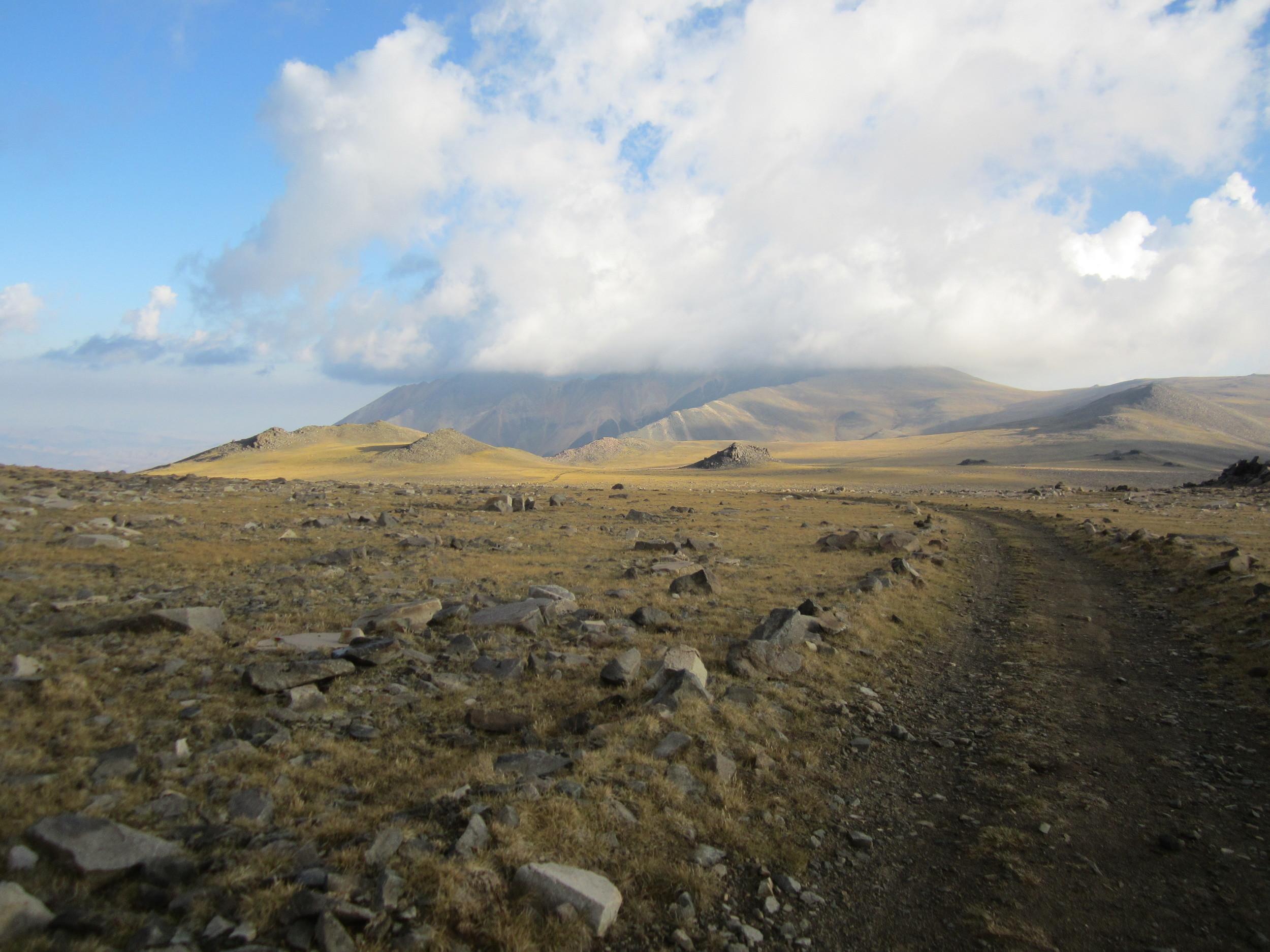 White Mountain, 14,252'