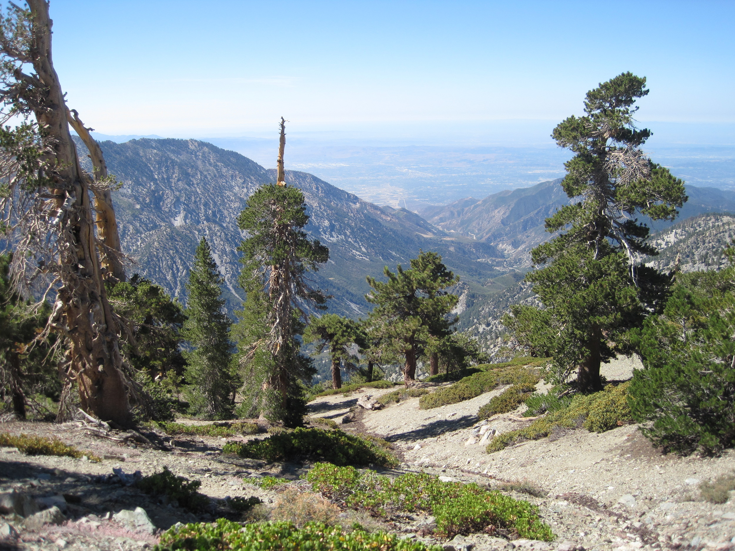 Mt Baldy Photos