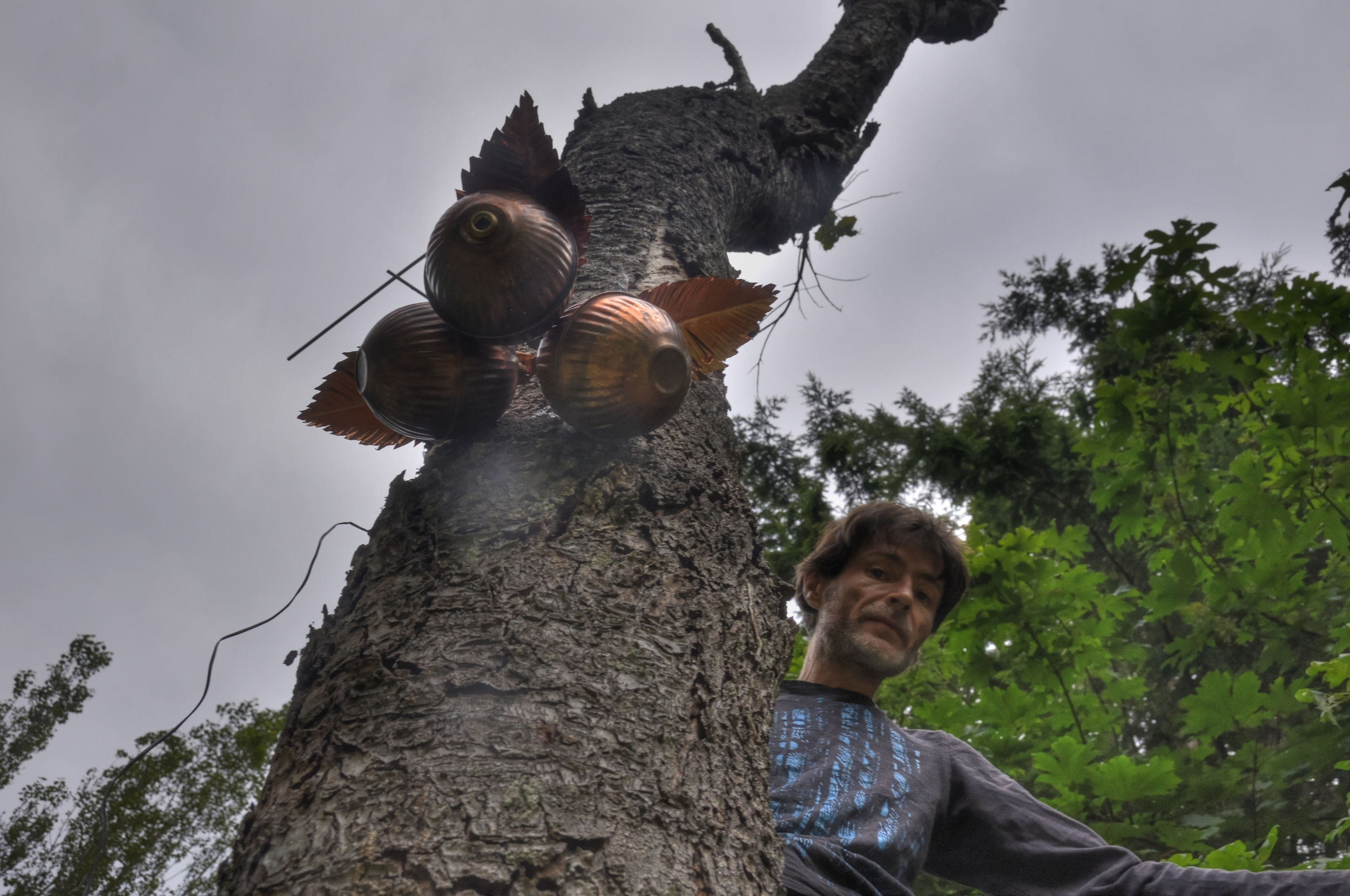 Timothy Gee in the SoundPod Tree