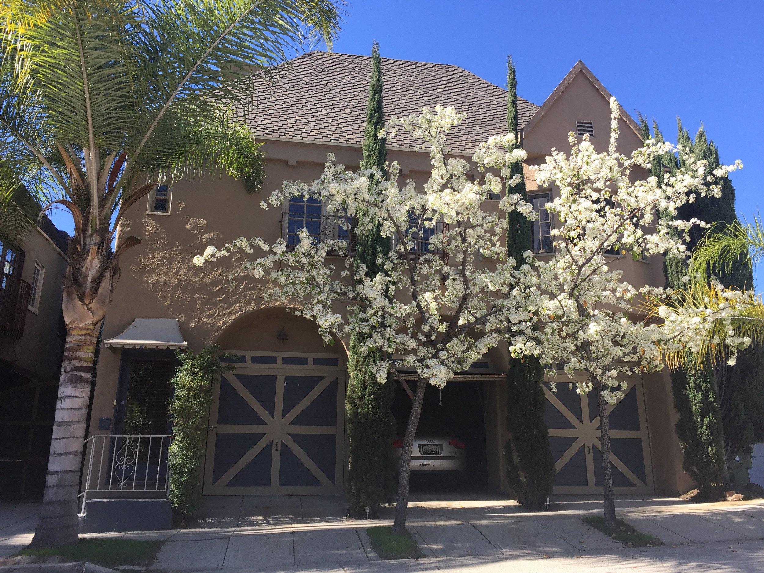 Tica Villa, North Tica Drive, Los Feliz @ $4495
