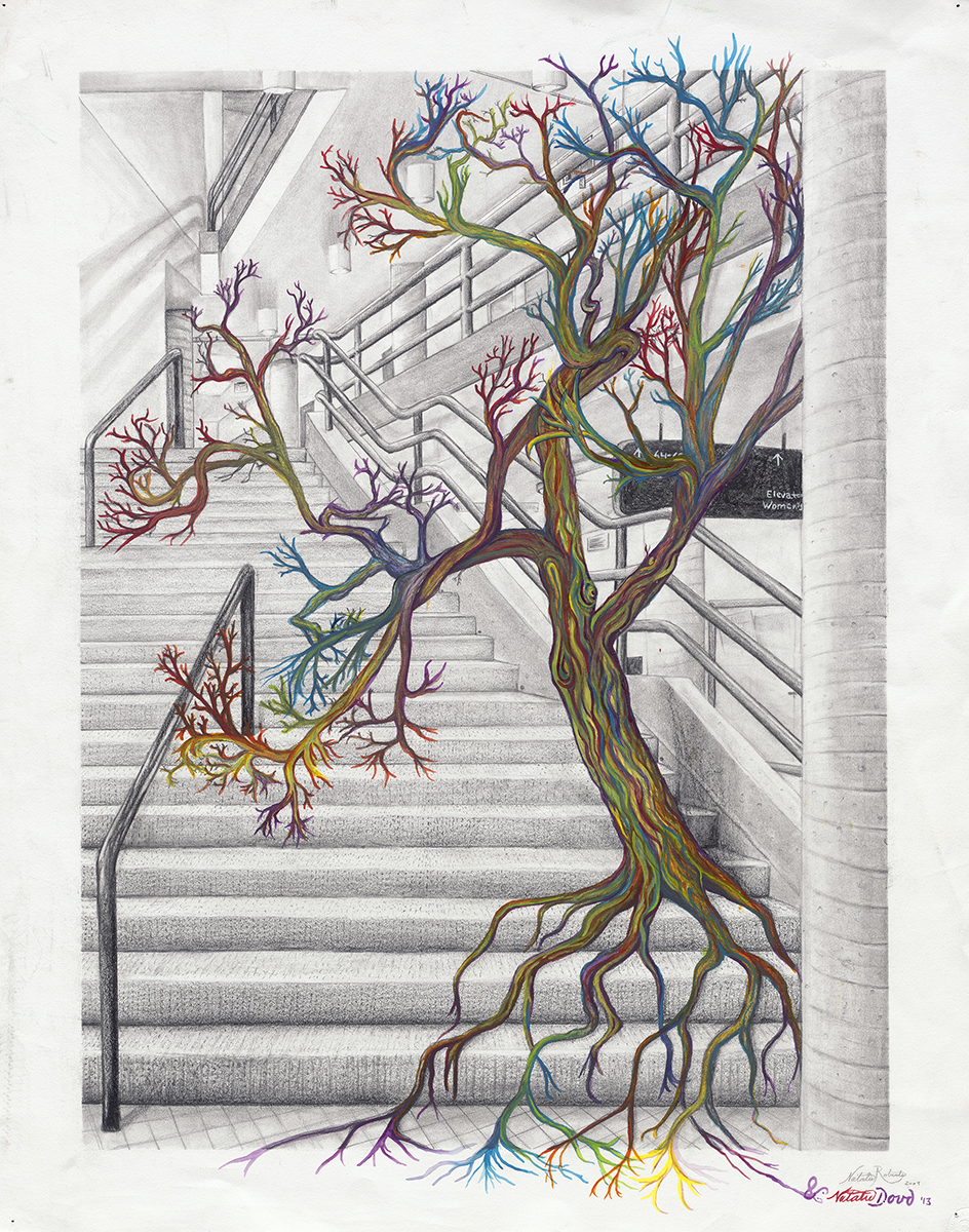 """McNeal Hall Tree is w ell known amongst students at the College of Design. The McNeal Hall drawing is a capstone project for underclassmen. Revisited half a decade later, McNeil Hall Tree is a collaboration across space and time.    Pencil and watercolor on paper28"""" x 22"""""""