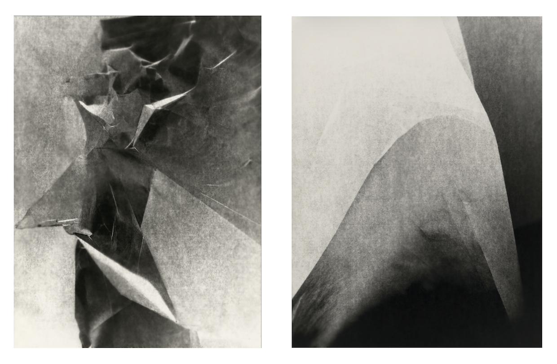 Furrow (diptych), 2013