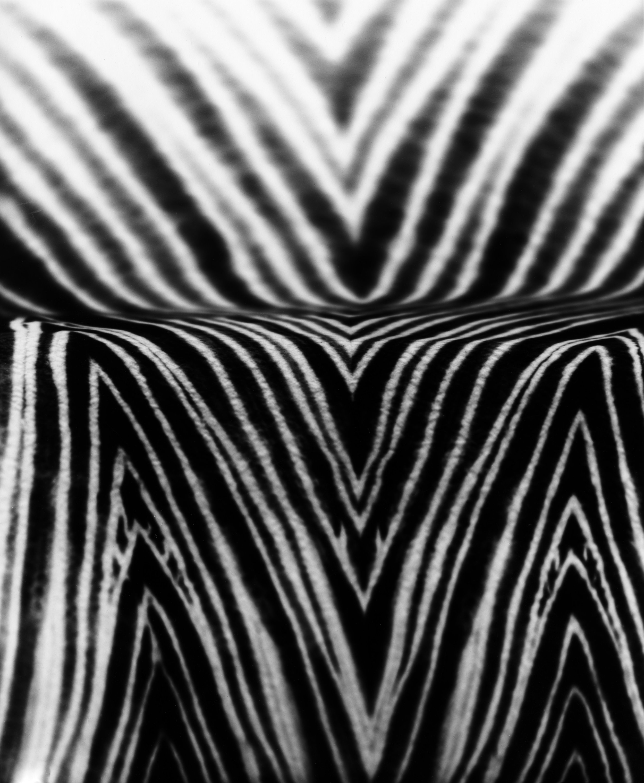 Slide , 2015  silver gelatin paper negative, 5 x 4 inches