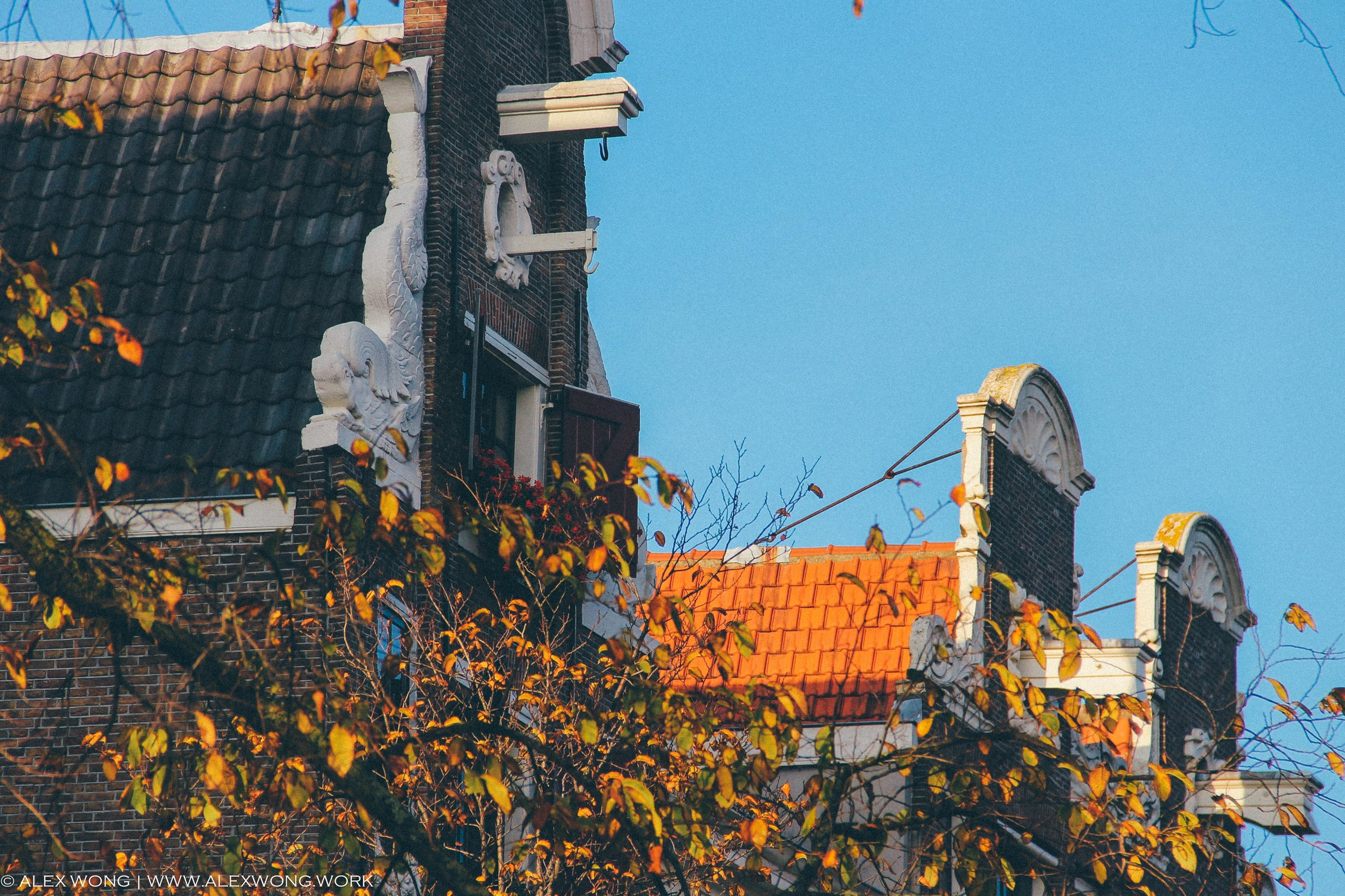 Amsterdam - Roof.jpg