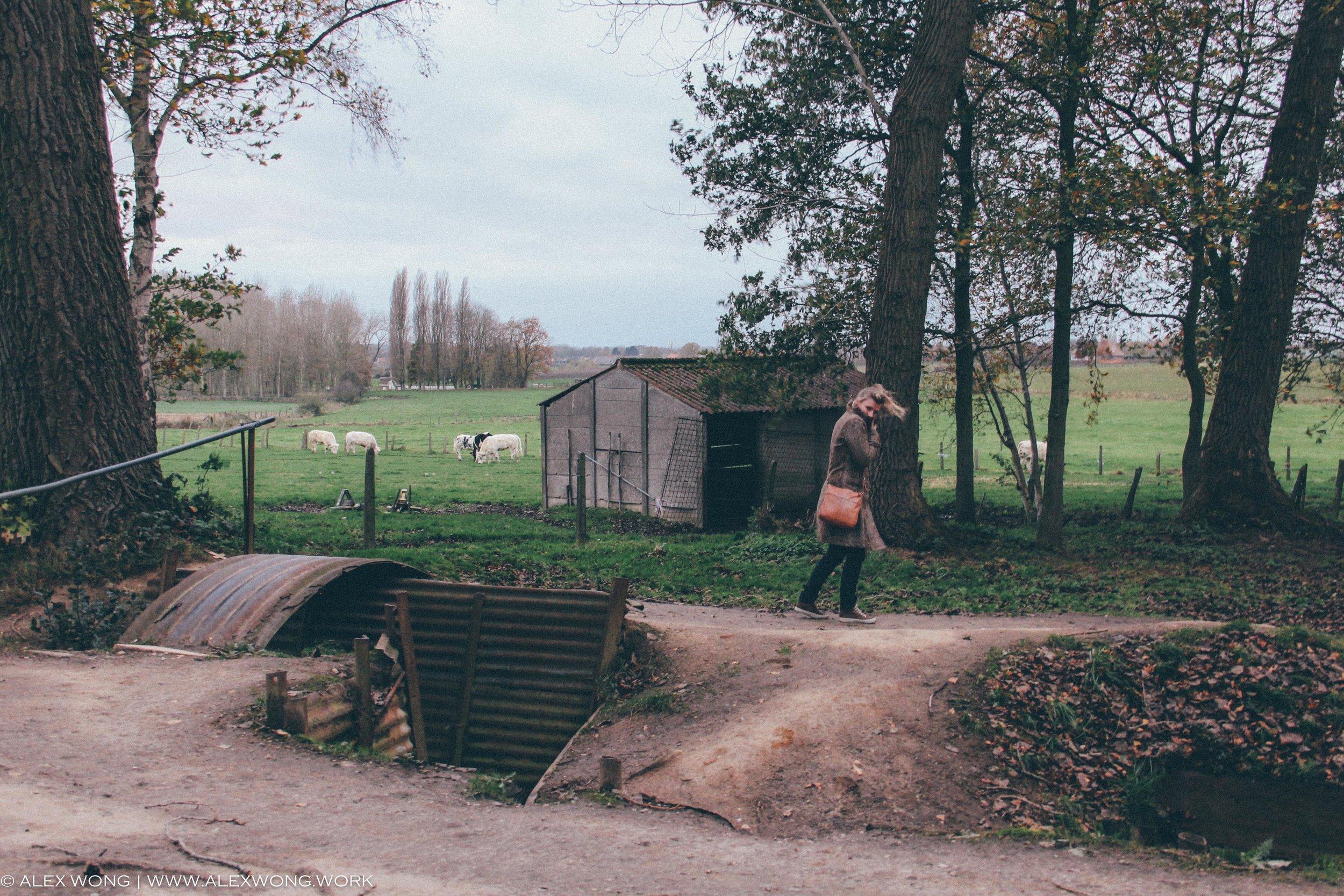Ypres - Hill 62.jpg