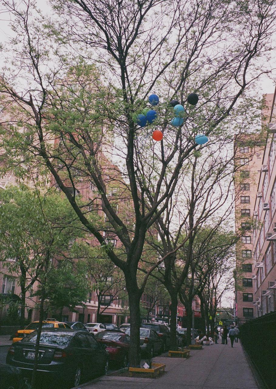 New York, New York, 2011 (35mm)