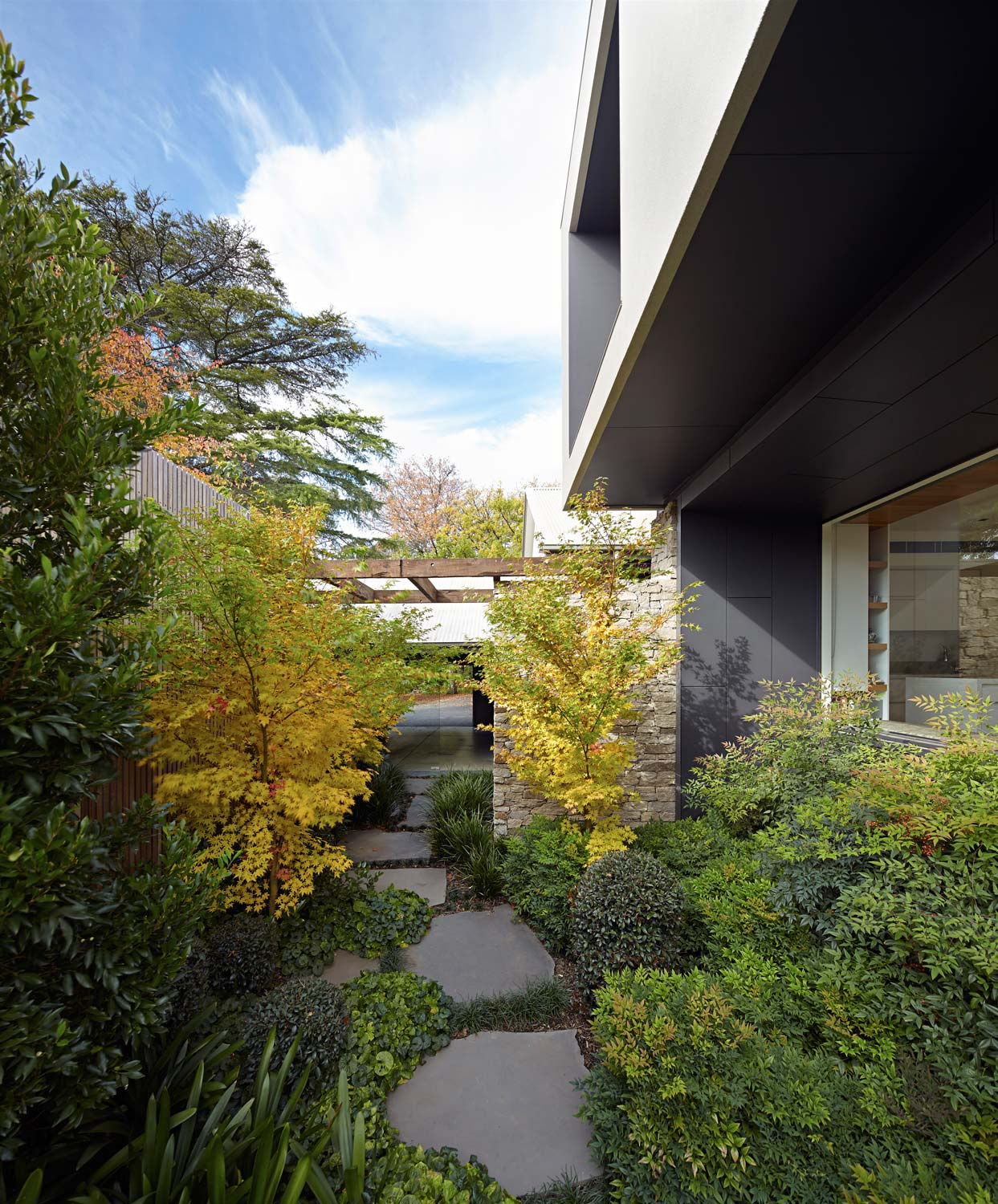 balwyn-house-renovation-by-warc-studio-10.jpg