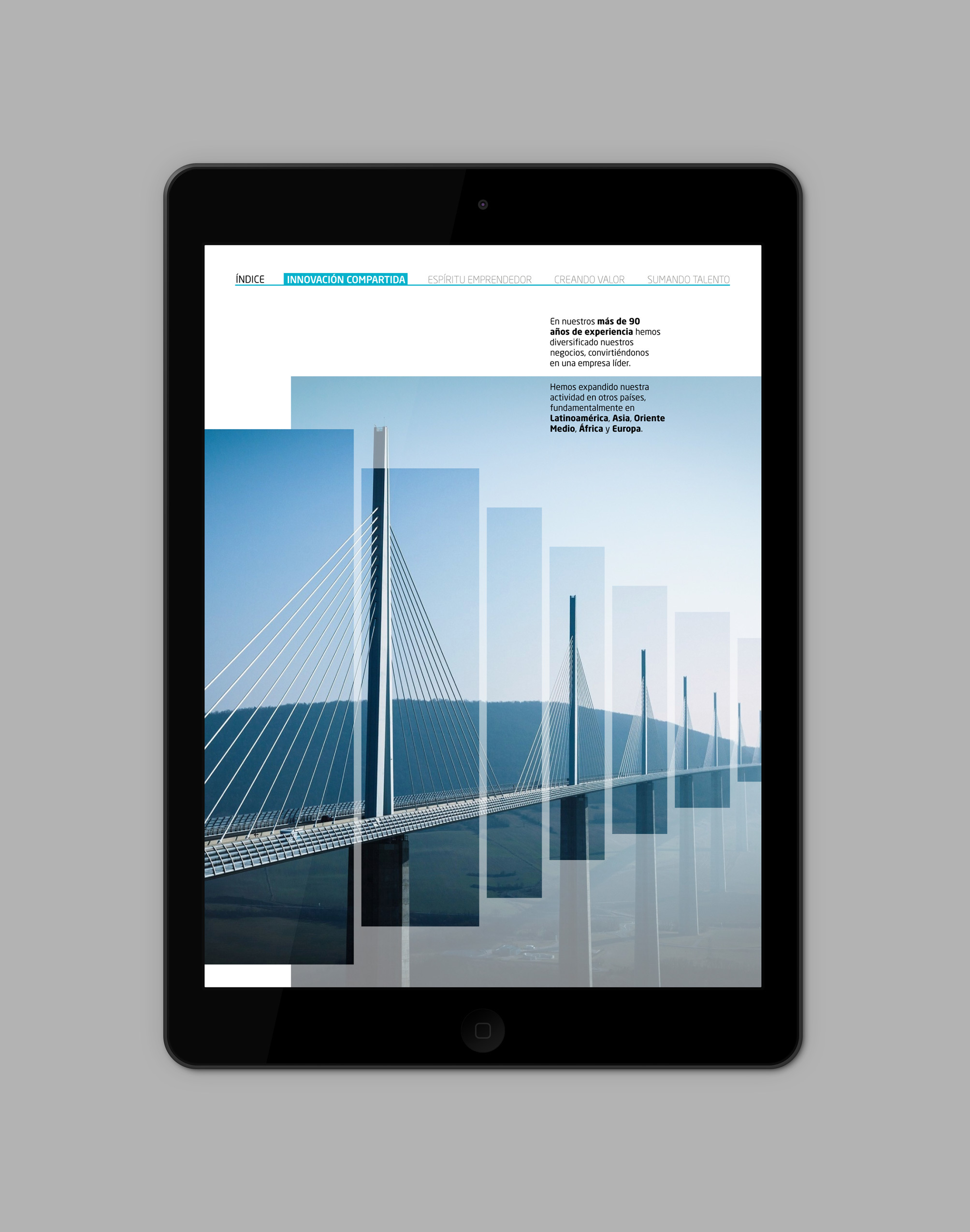iPad-Air_Indra06.jpg