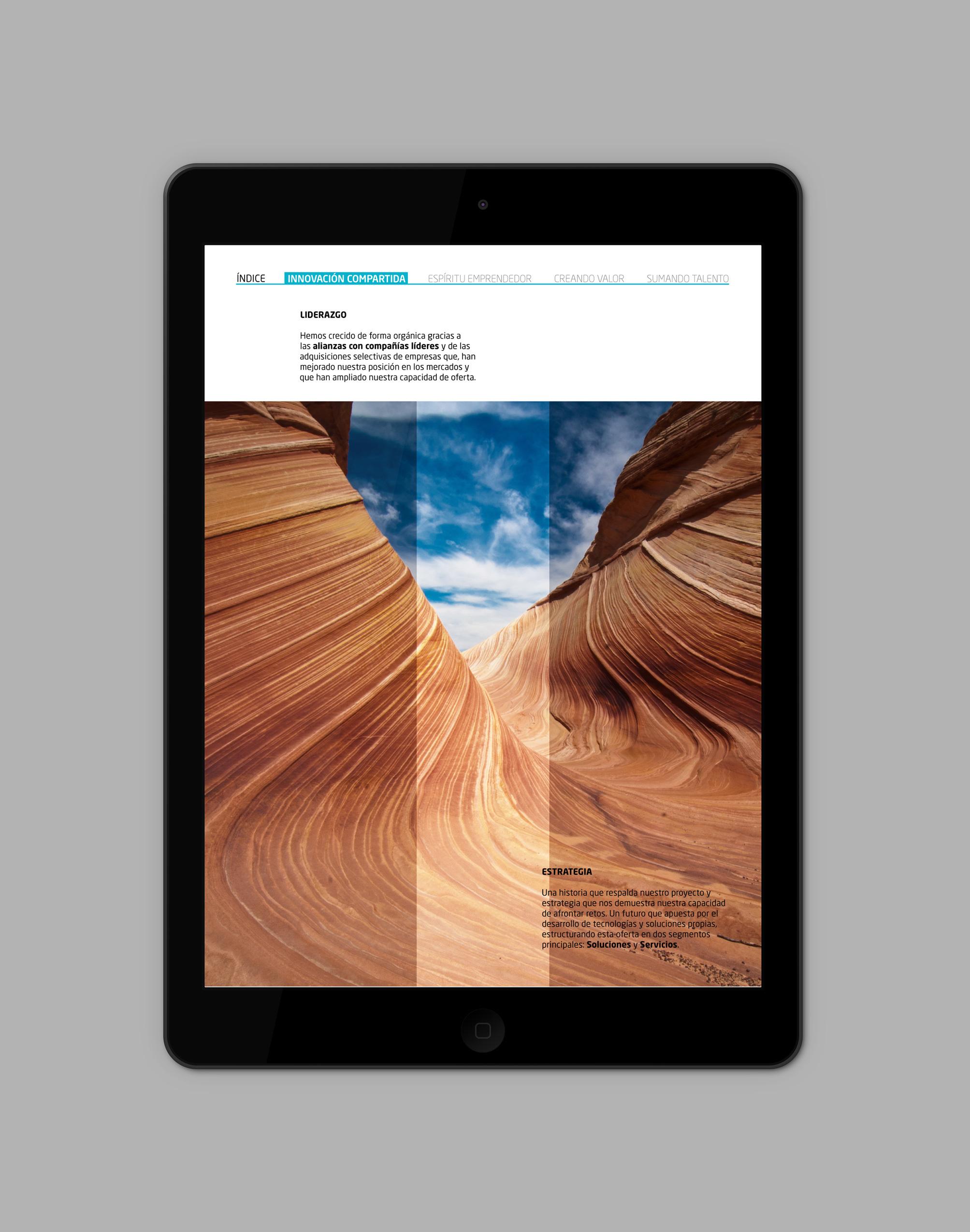 iPad-Air_Indra07.jpg