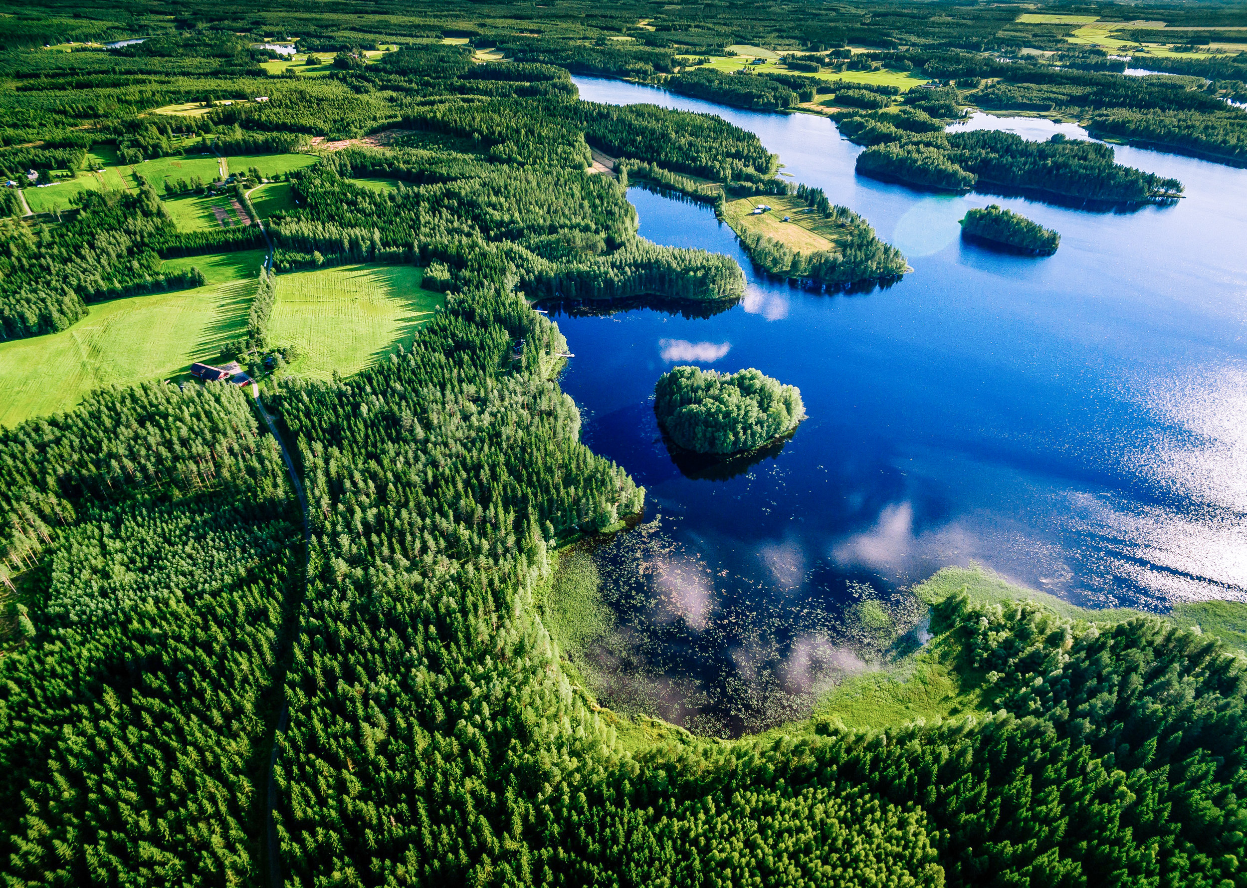 Aerial view of blue lakes and green forests on a sunny summer da