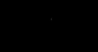 yoga_vida_logo-home.png