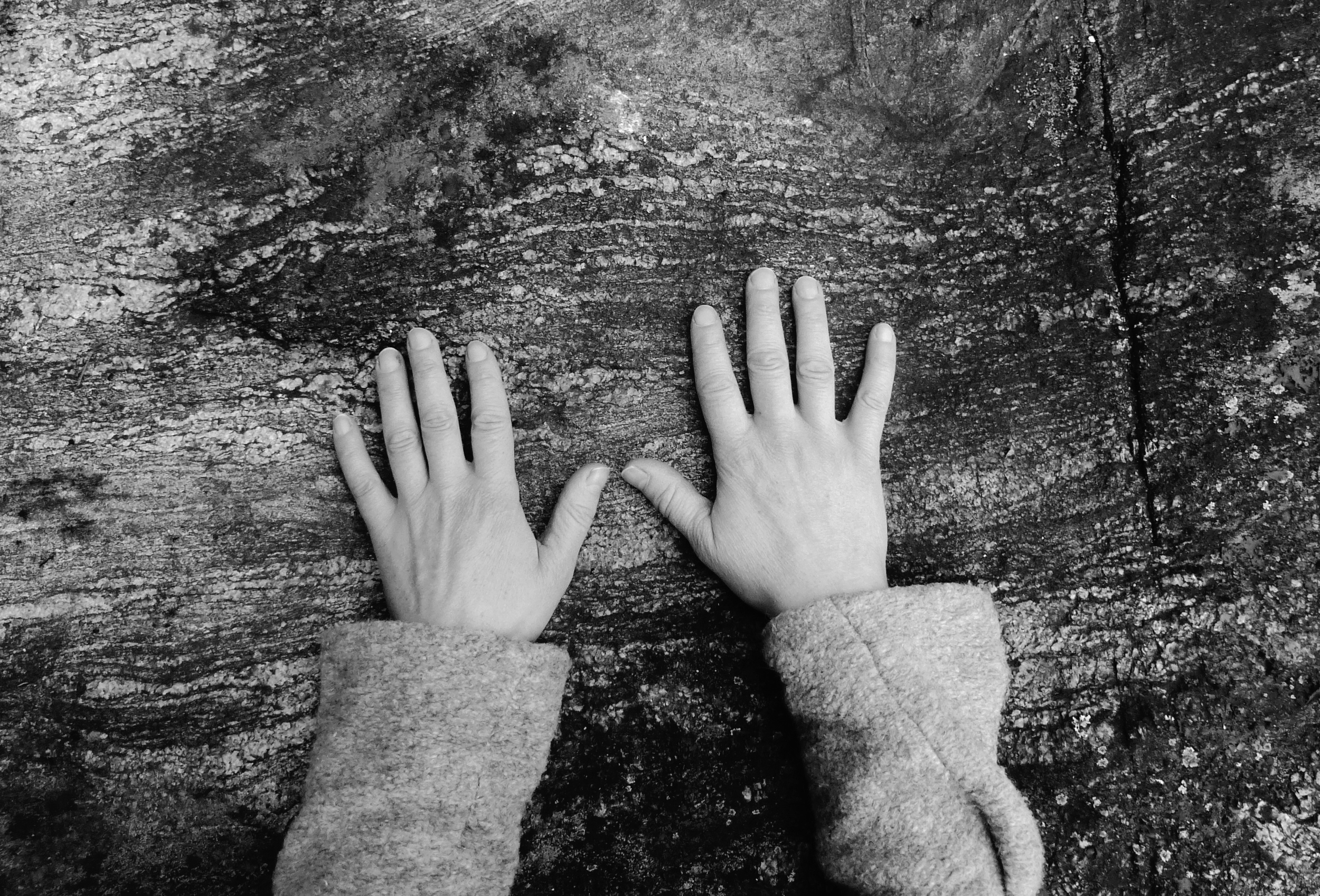 Artist's Hands, Satu Palokangas 2014