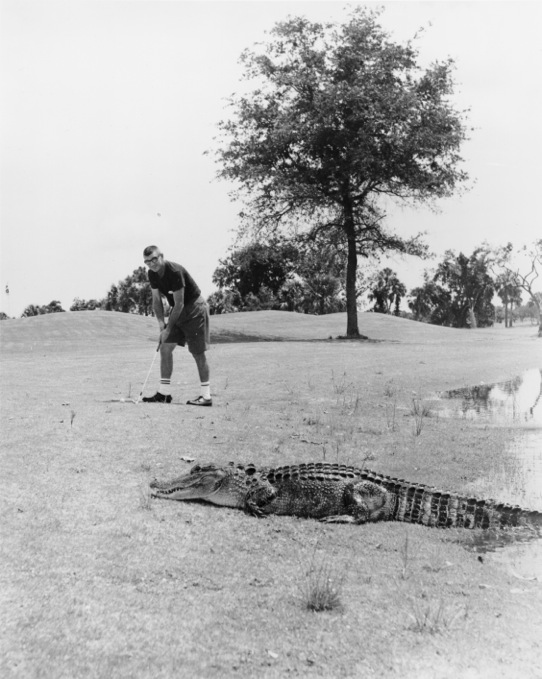 Vinatge Photograph, Bobby Jones Golf Club, courtesy of Sarasota County Historical Resources