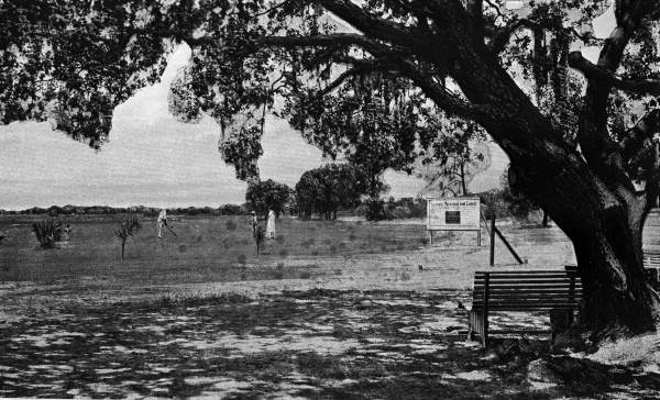 Sarasota Municipal Golf Course  c.1926. Photograph courtesy of State Archives of Florida, Florida Memory Collection.