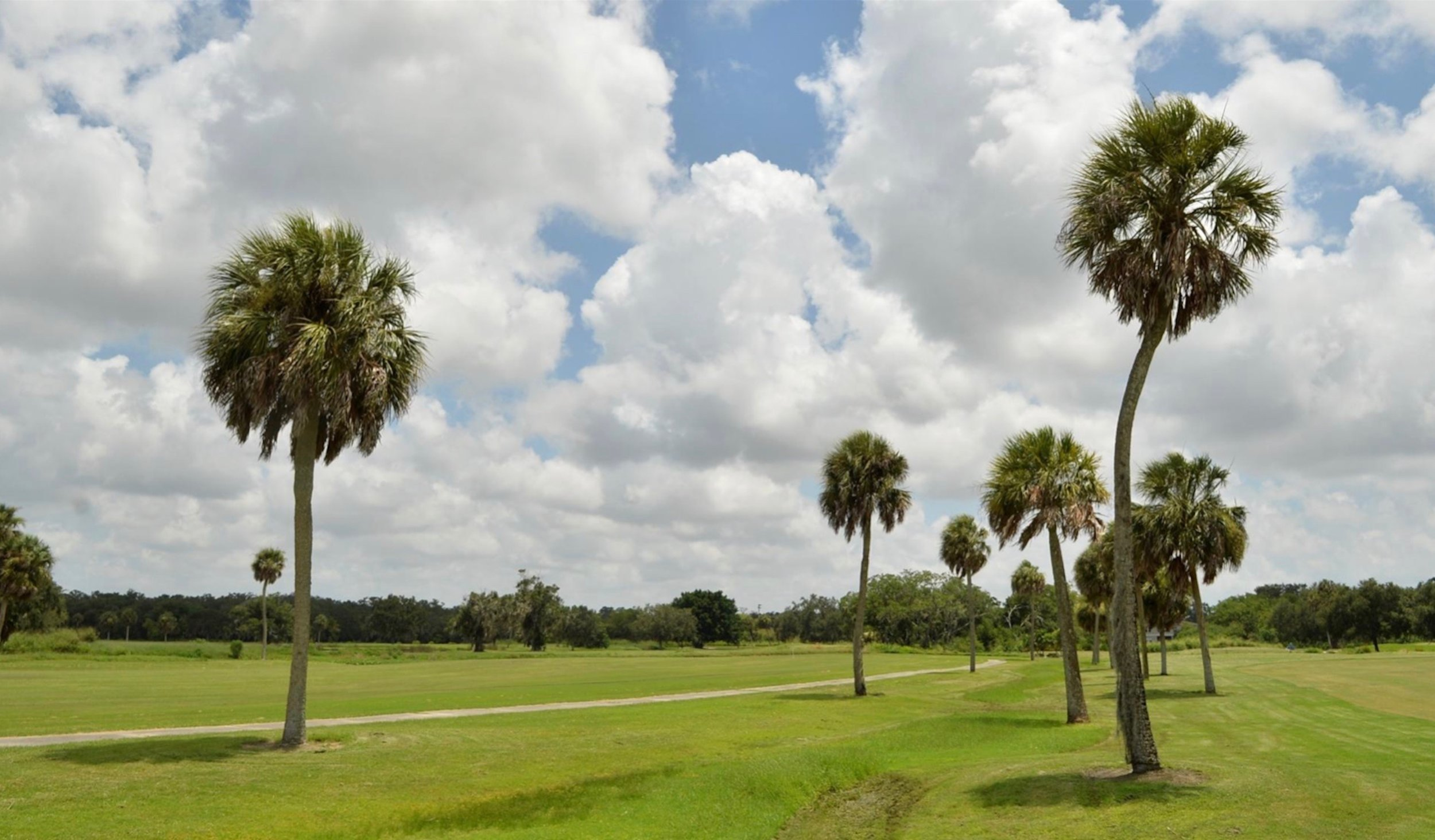 The  Bobby Jones  Golf Course is a 45-hole municipal golf course operated by the City of Sarasota. The city is exploring with the Conservation Foundation of the Gulf Coast a plan to preserve the 300 acres as open space. Herald-Tribune staff photo /  Mike Lang