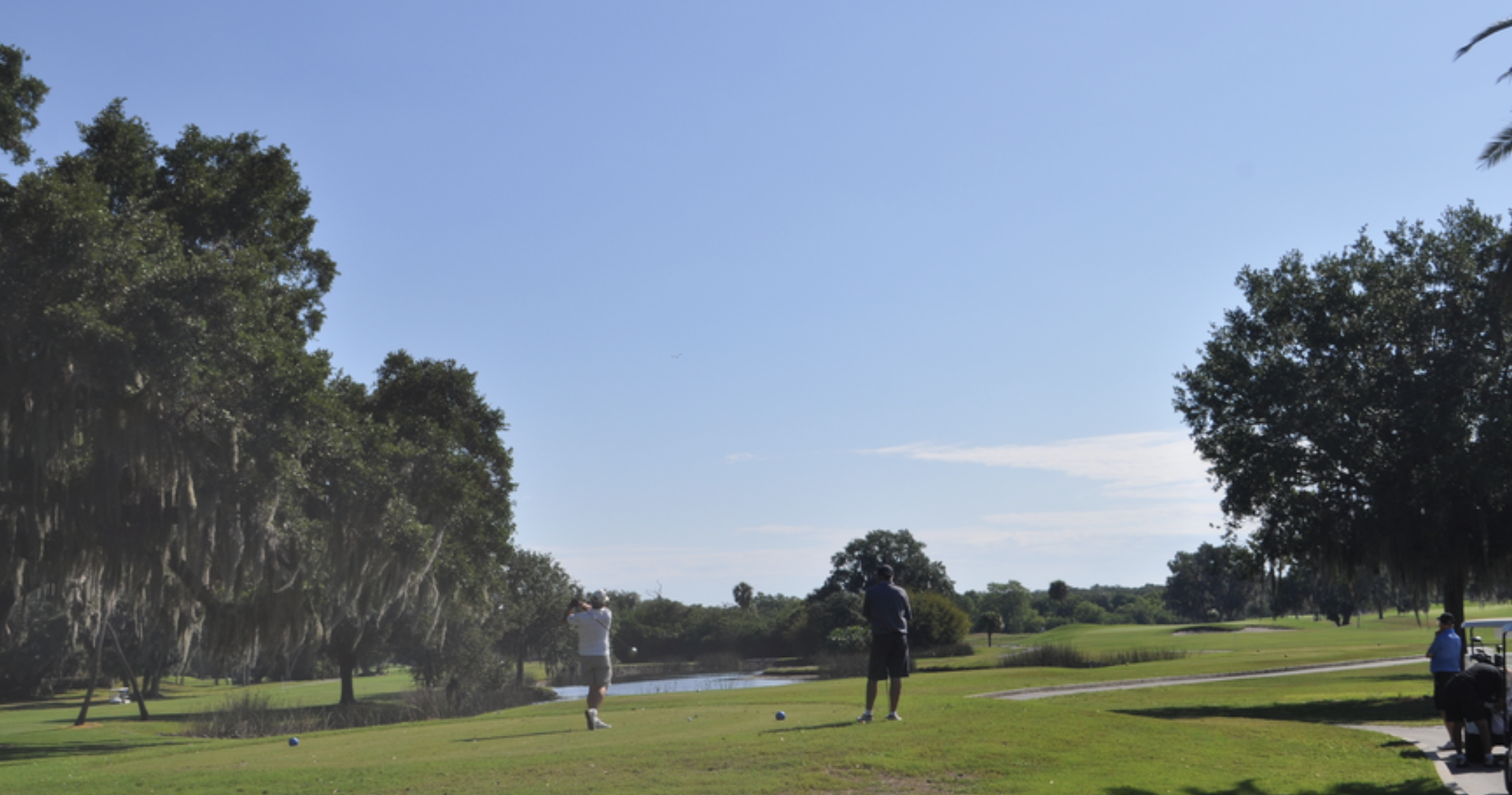 If it undertakes the 45-hole project, the city estimates it would close the Bobby Jones complex in April 2020 and reopen in October 2021. Photograph courtesy of Sarasota Observer.