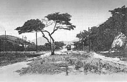 Avenida Nossa Senhora de Copacabana