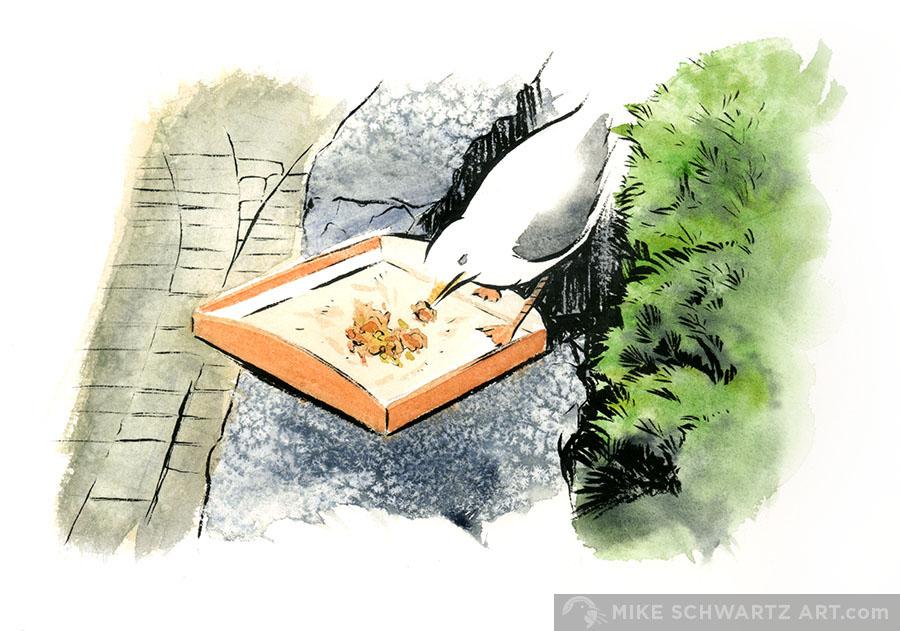 Mike-Schwartz-Illustration-Niagara-Watercolor-4.jpg