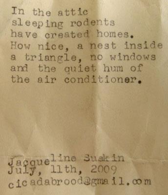 sleepingrodents.jpg