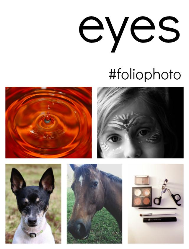 foliophoto eyes learning to photograph