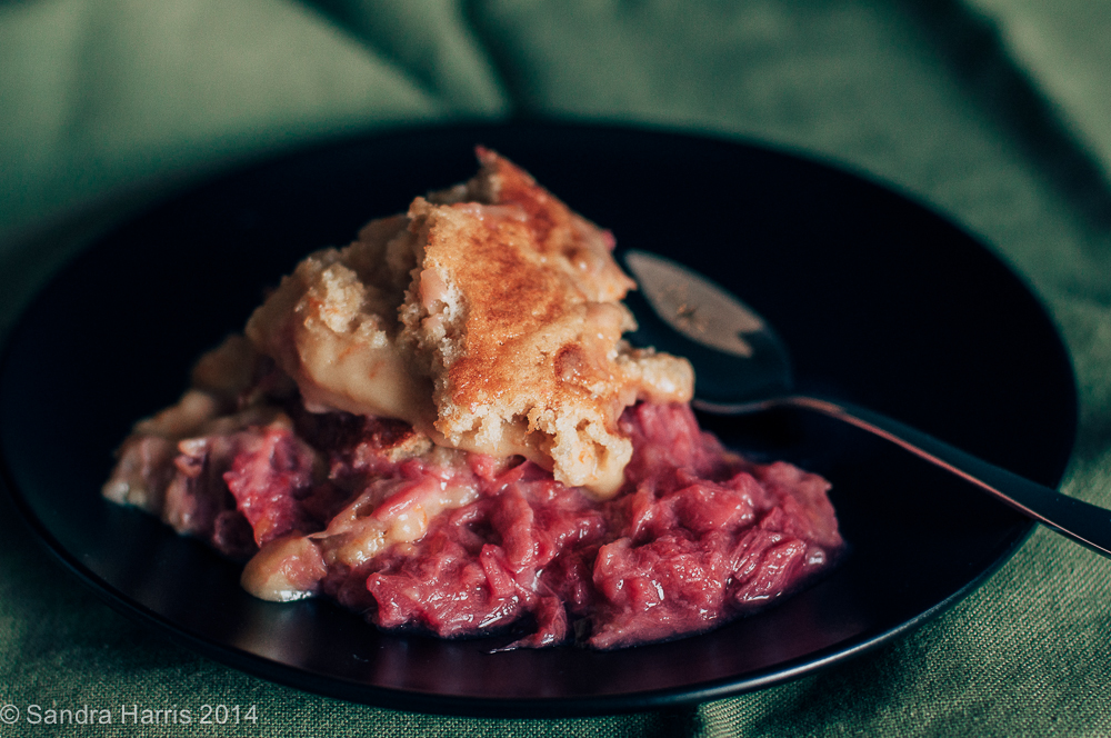 Self saucing rhubarb pudding - Sandra Harris