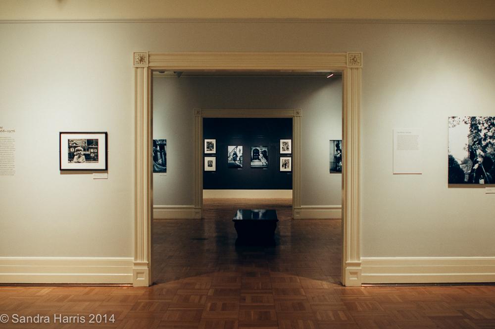 New York Historical Society, Bill Cunningham Exhibit