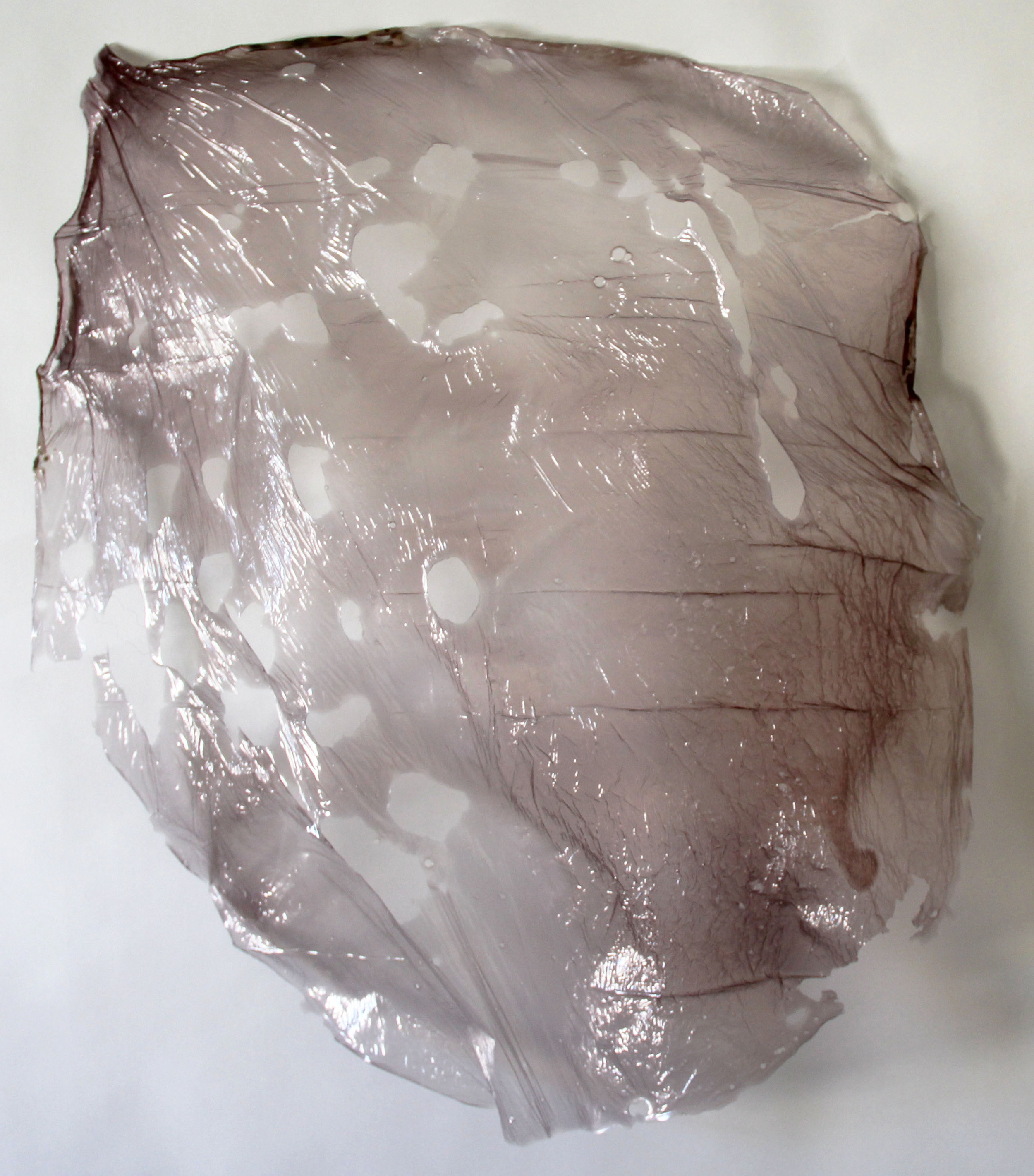 thin1 2014 gelatin, hibiscus 24 x 22 inches