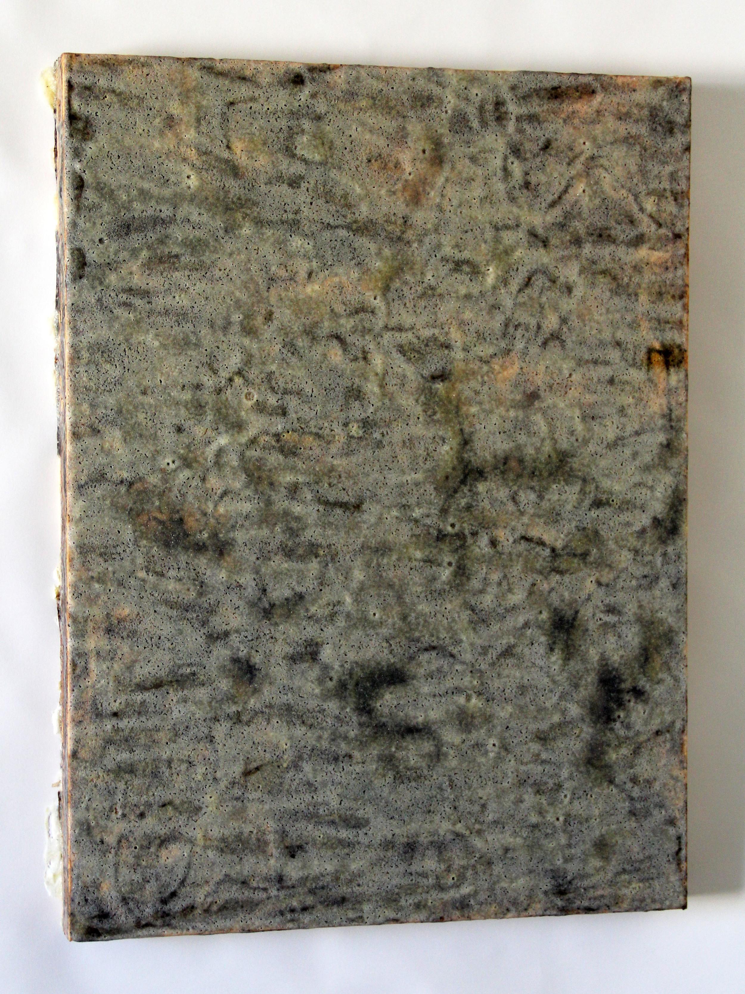 crystallization series32014 salt, borax, yellow dock, turmeric, acrylic on wood 24 x 18 x 1.5 inches