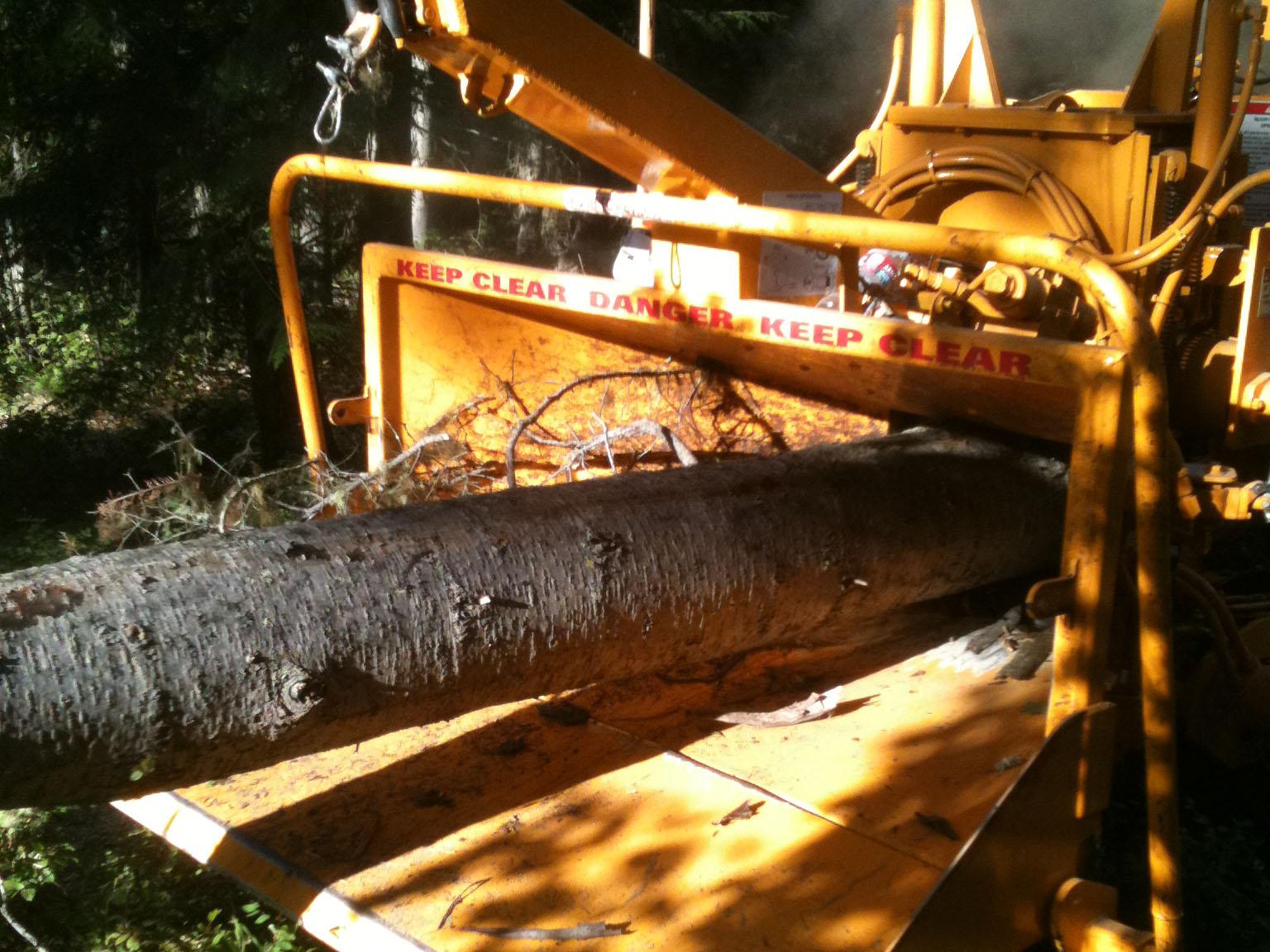 logging-righttool.jpg