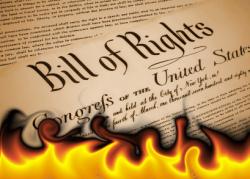 constitution_burning.jpg