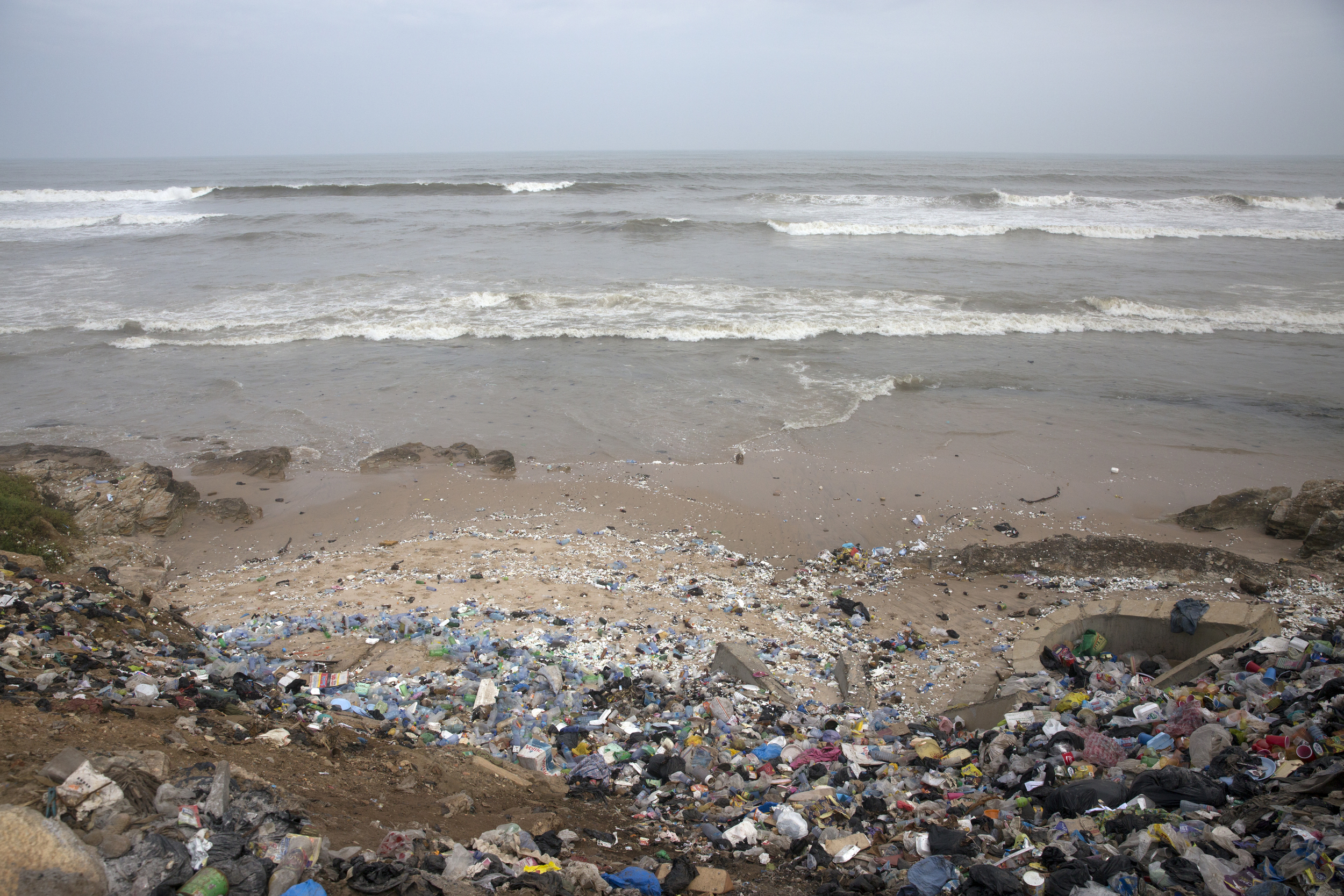 As you can see, a  lot  of people litter on this beach...