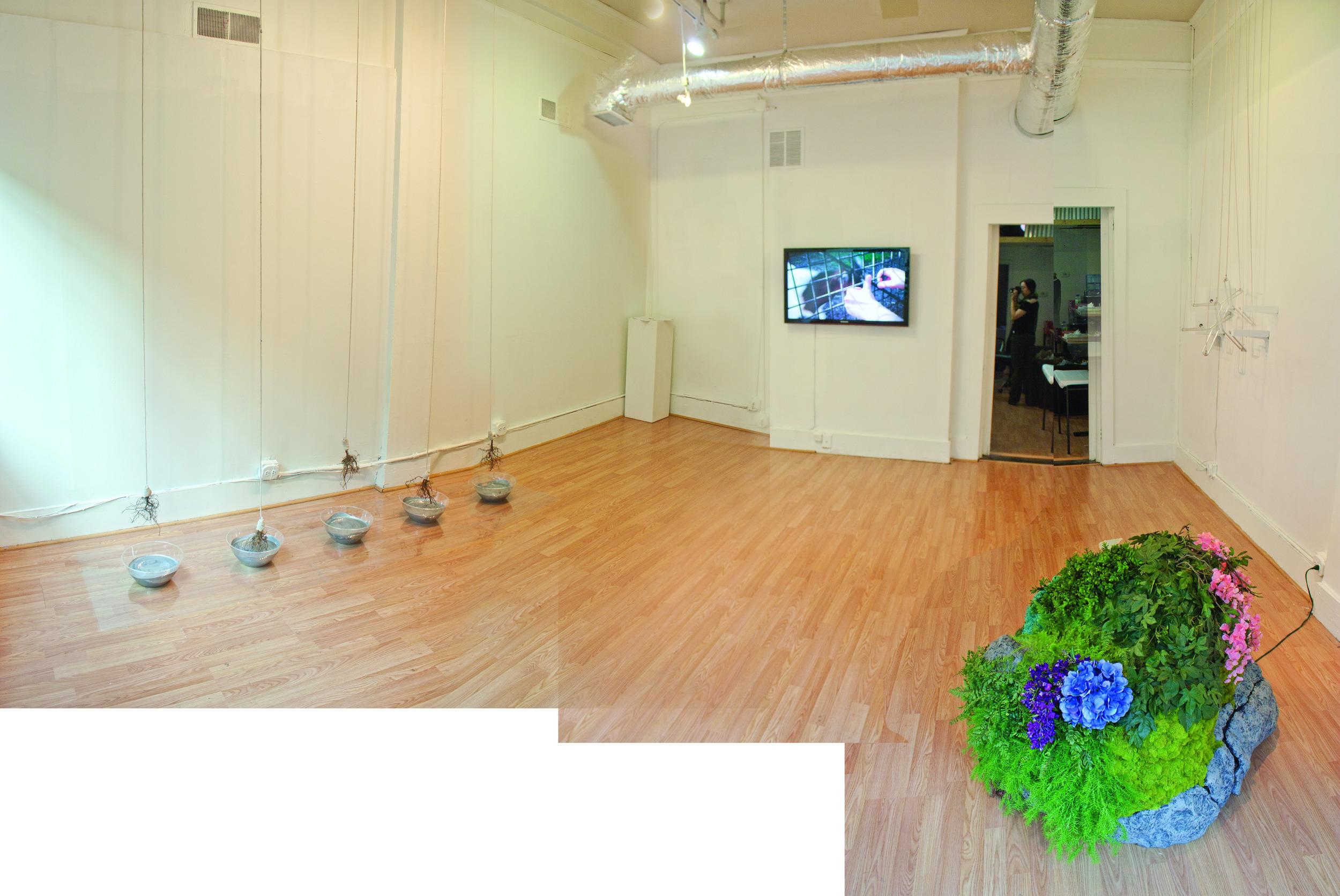 Panorama2web.jpg