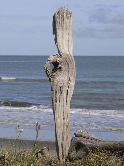 beach04_large.jpg