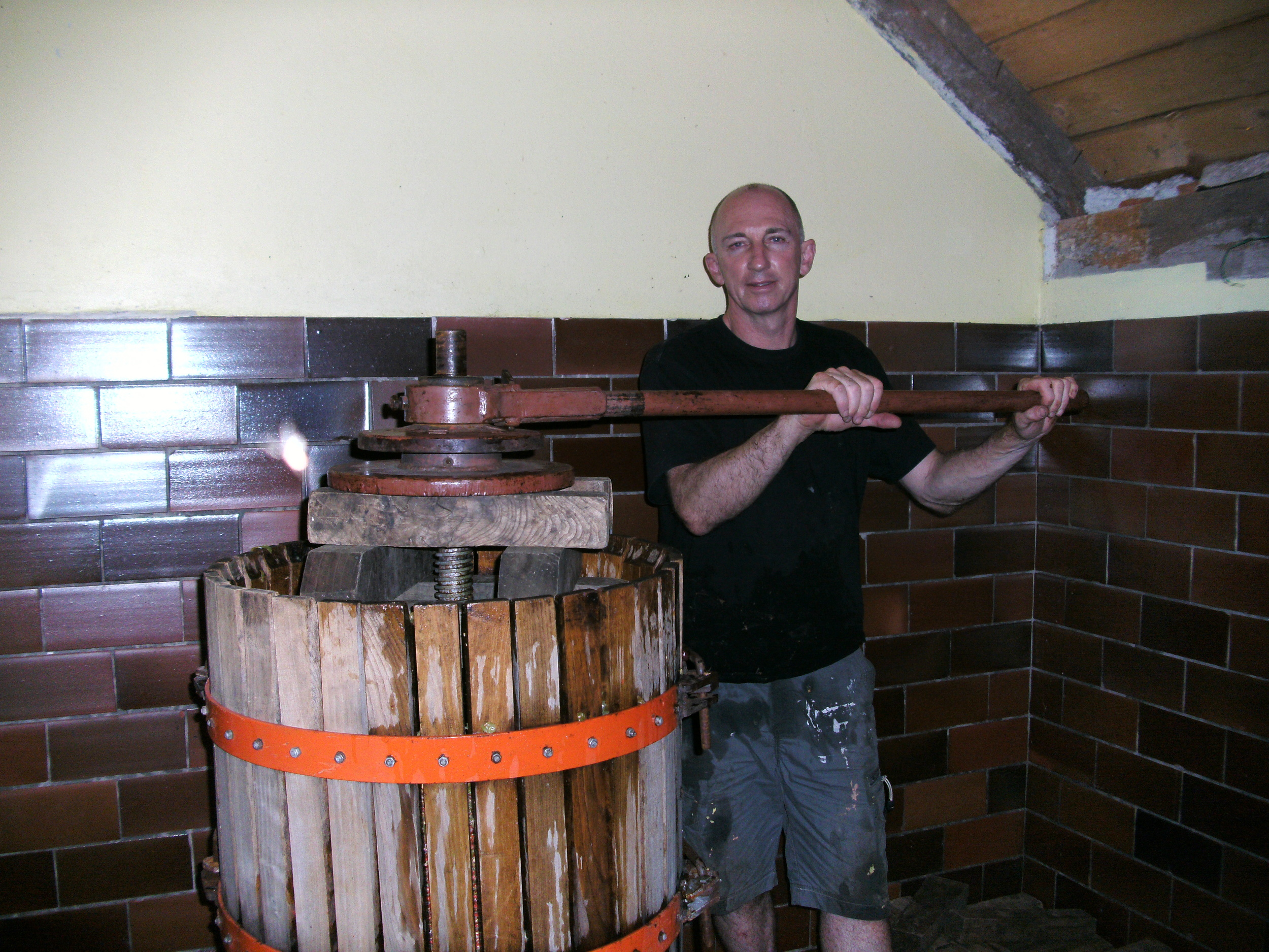 Using a basket press to squeeze juice from the grapes