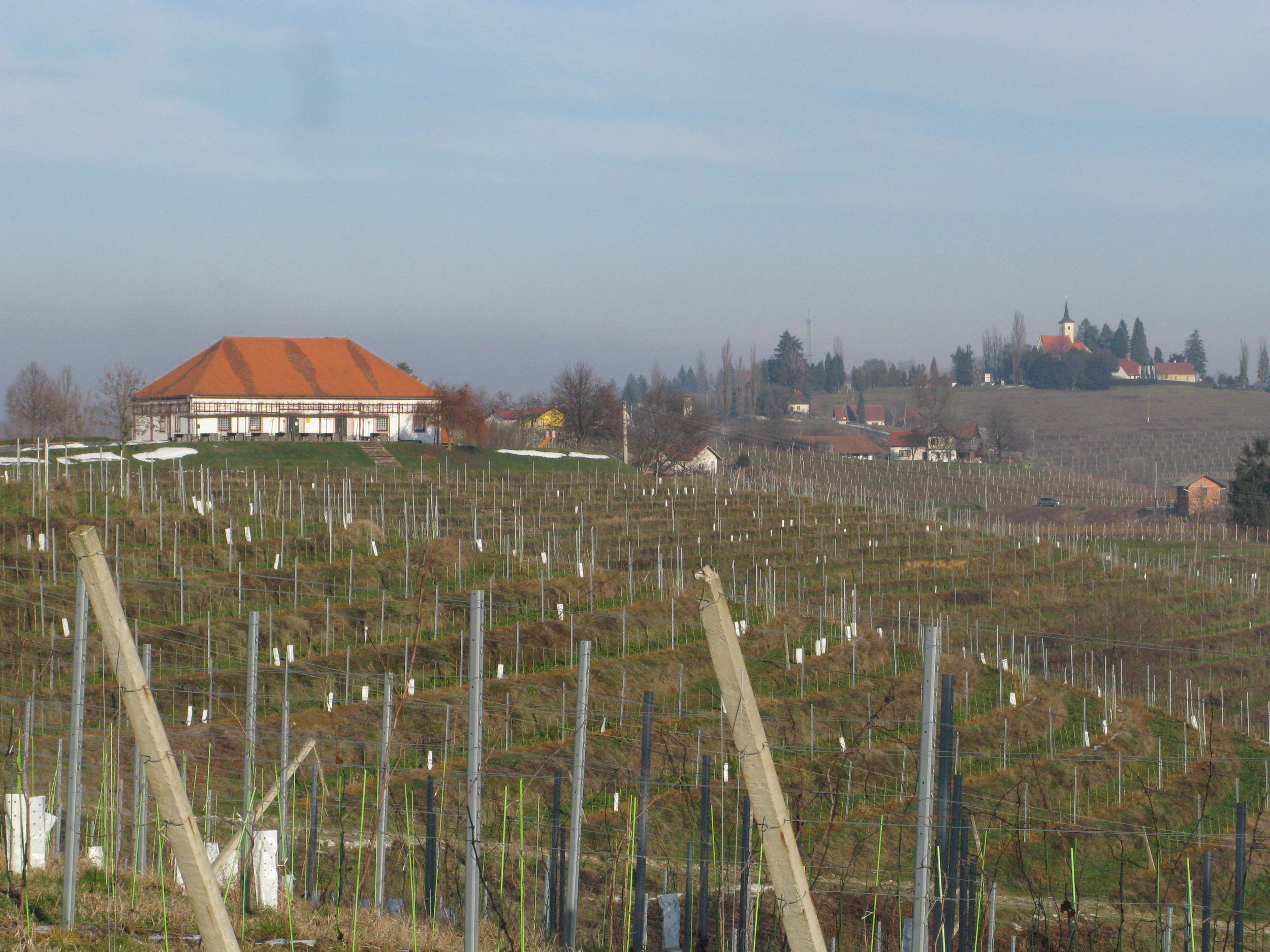 One of the venues for our wine tastings