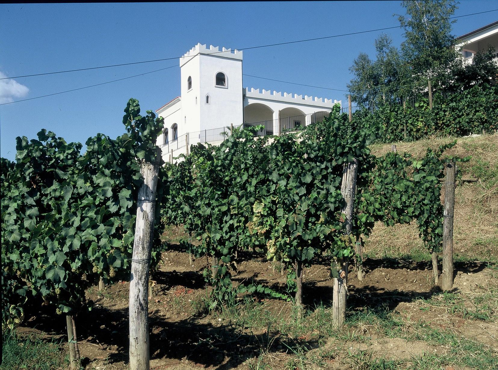 The Simčič winery