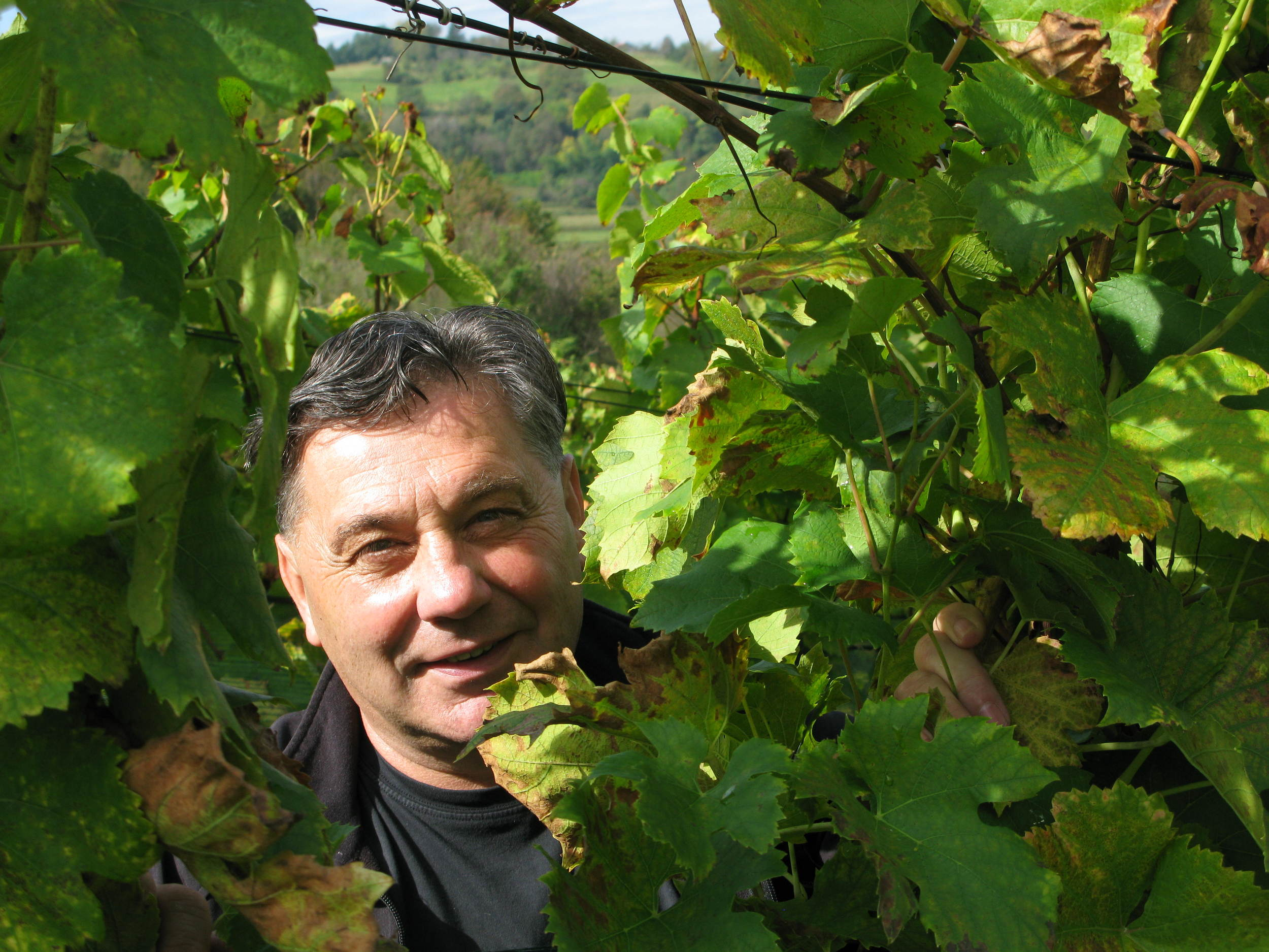 Boris Drenški is a part-timer with no formal training in winemaking. For him, it's all about moments of inspiration